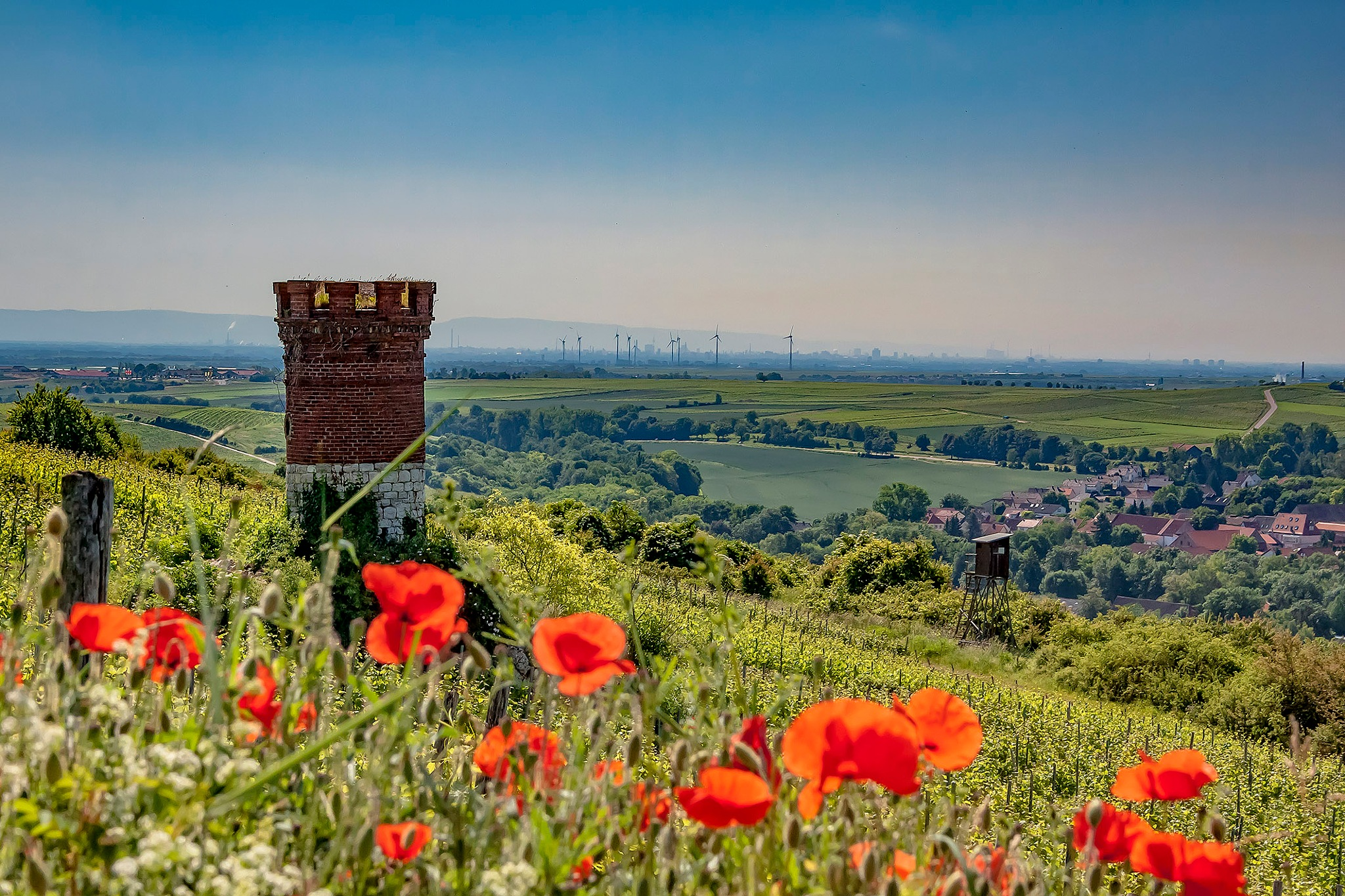Summer in the Palatinate / Germany by AdolfBeck