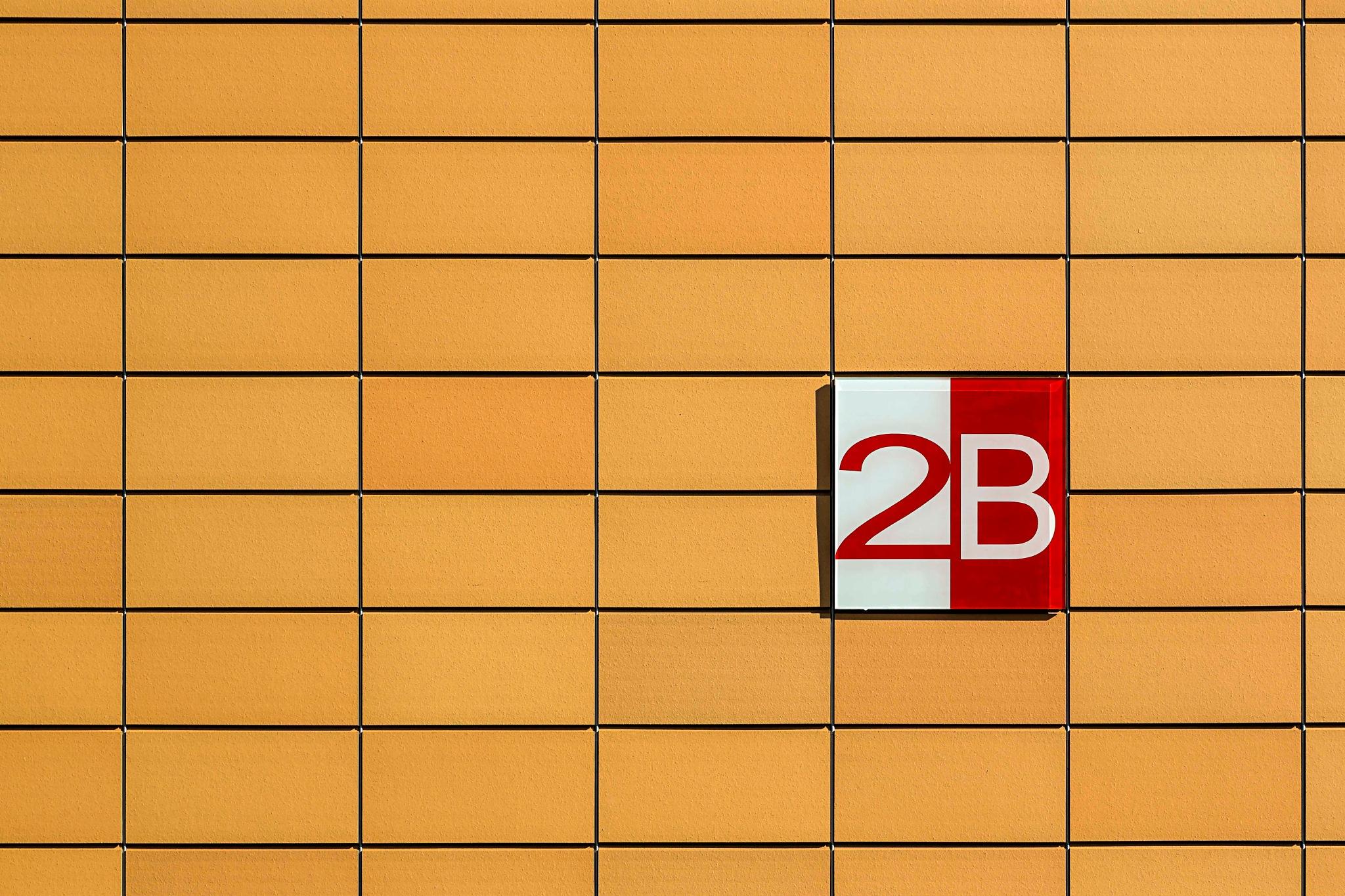 2B by AdolfBeck