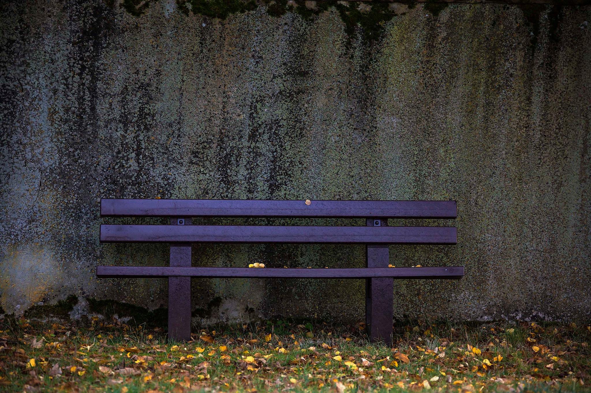 Autumn by AdolfBeck