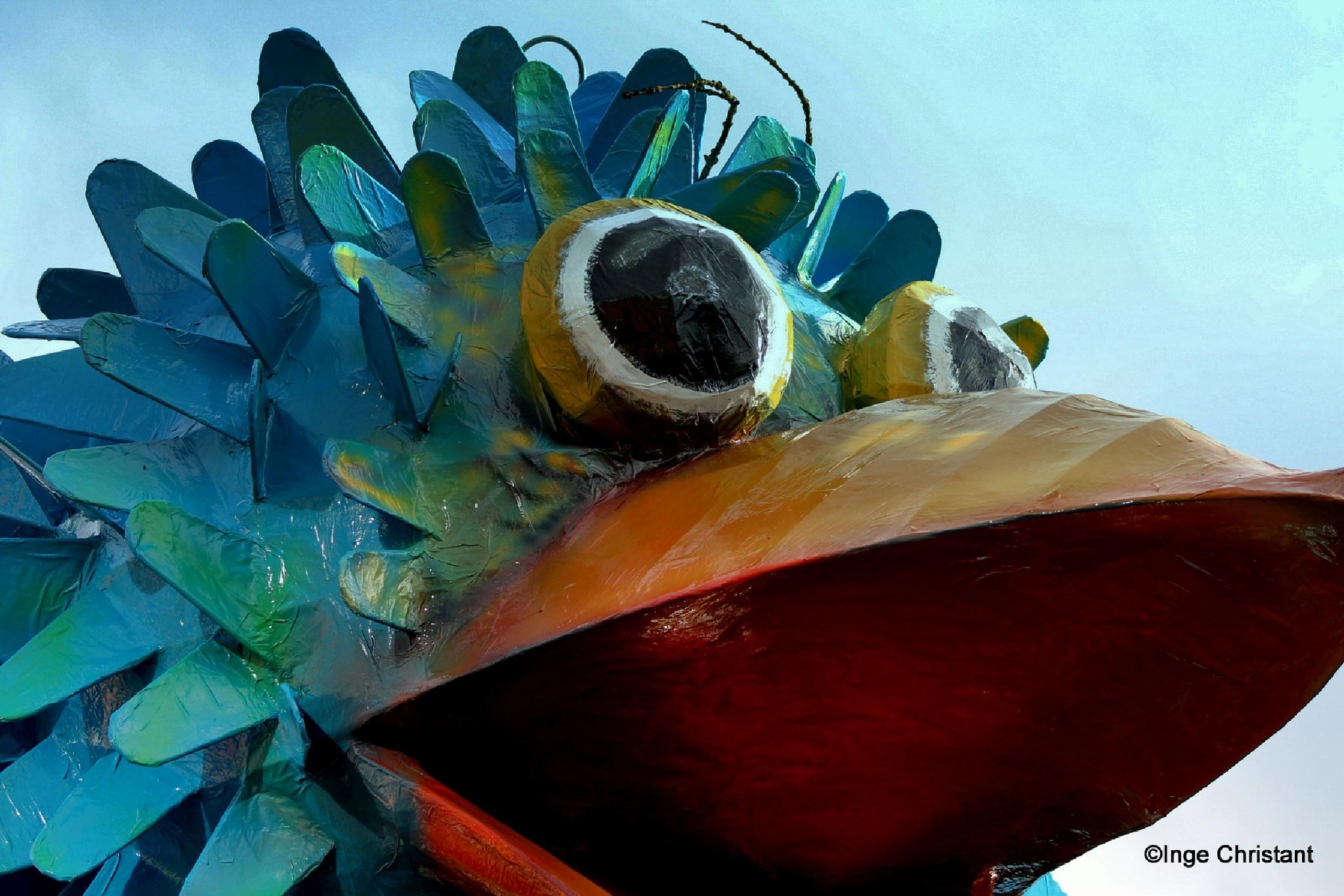 Carnaval by Inge Christant