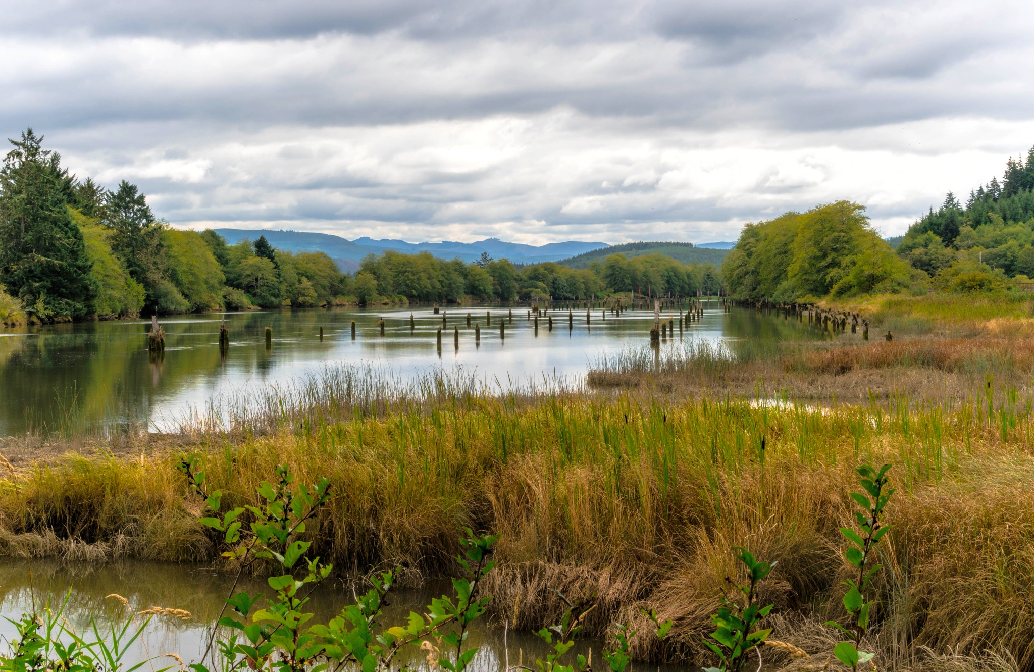 The River at Fort Clatsop by mike hope