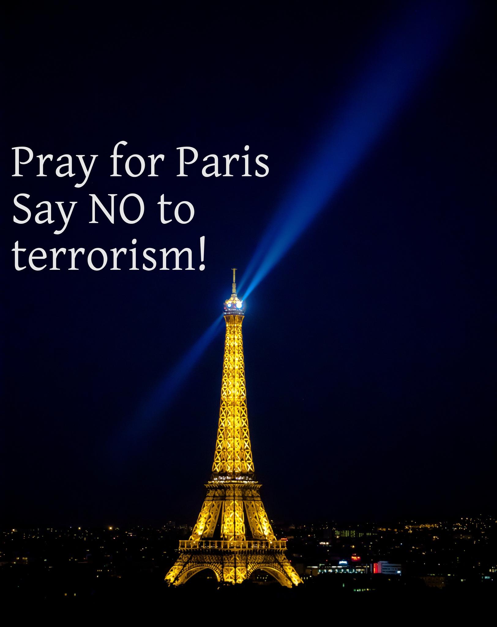 Pray for Paris - Say NO to terrorism!  by cloudwhisperer67