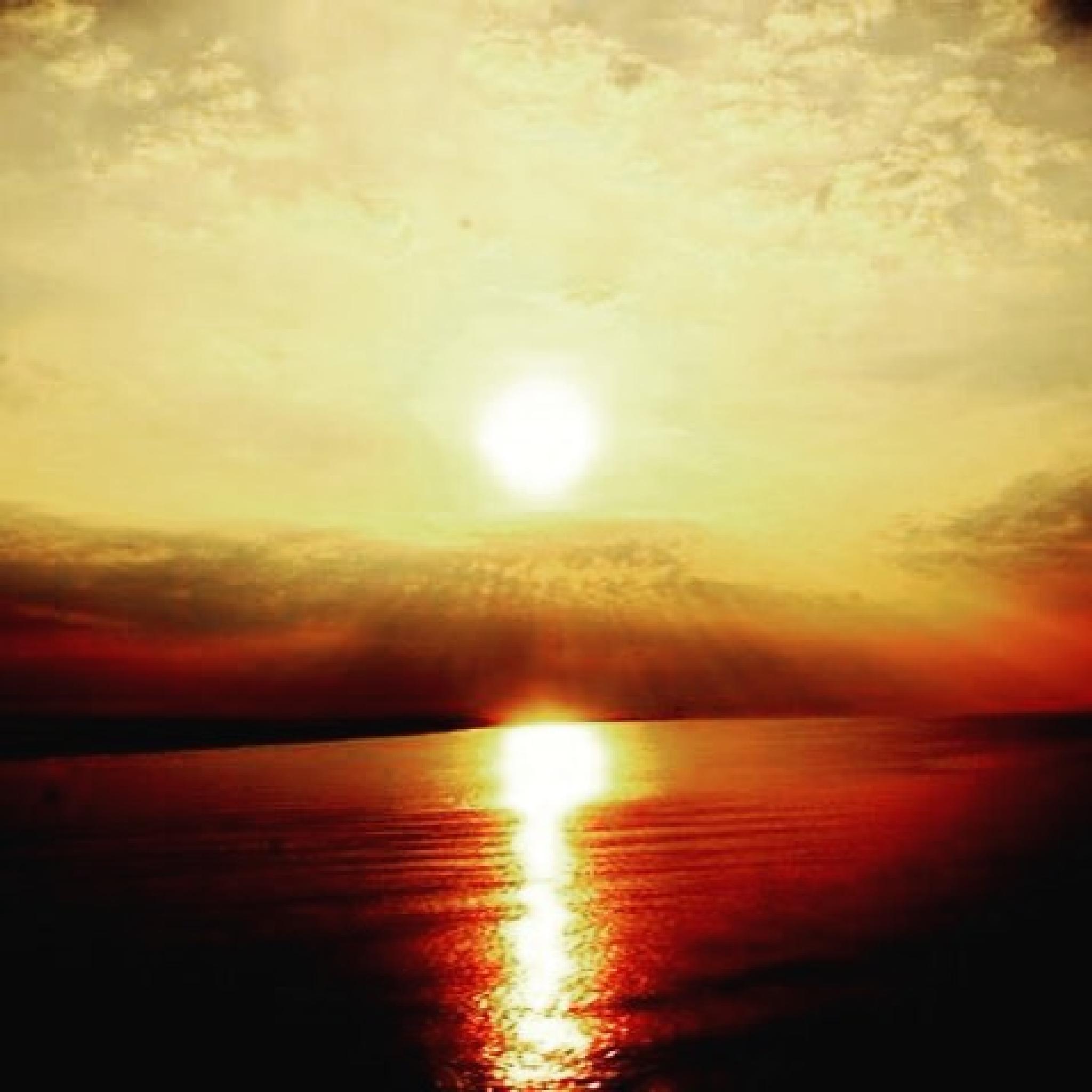 The Sun took a Morning Dip by Lisa BluWolf Sahani