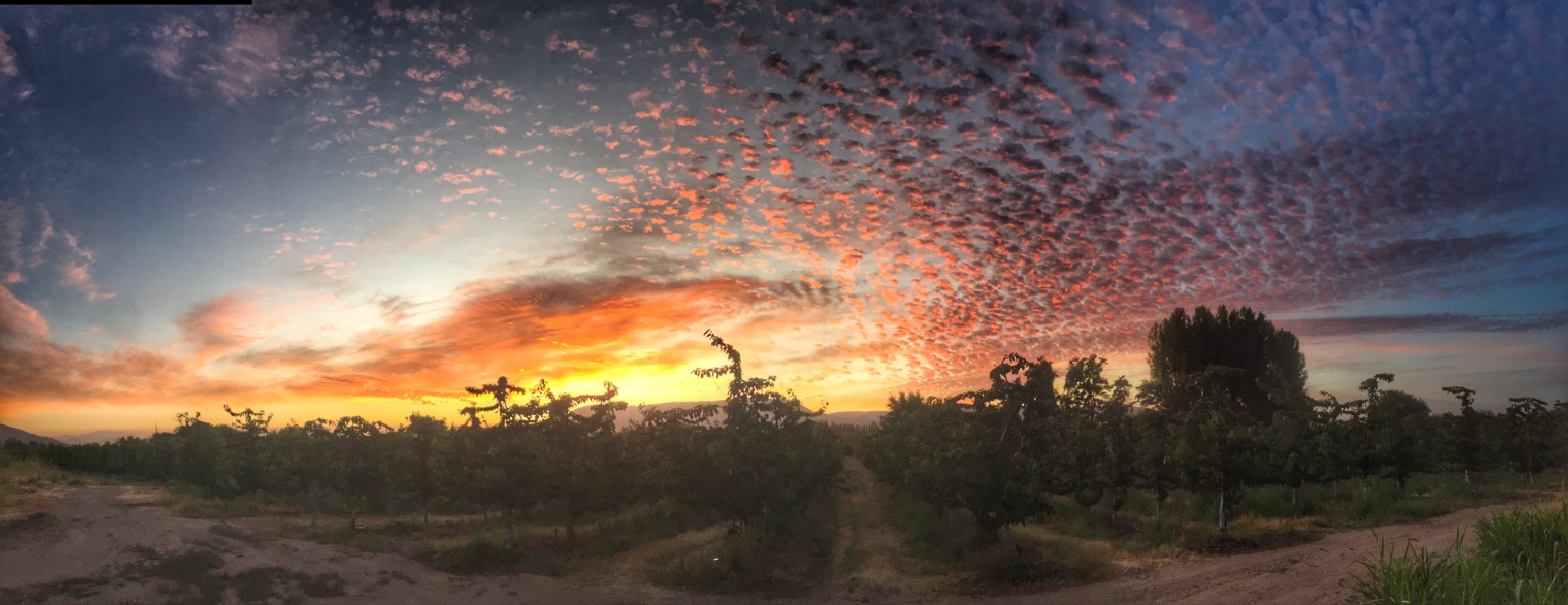 Sunrise by Liliana