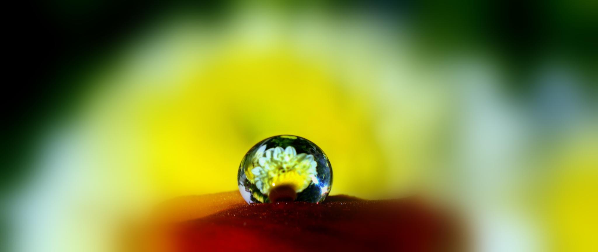 reflection by azeemiclicks