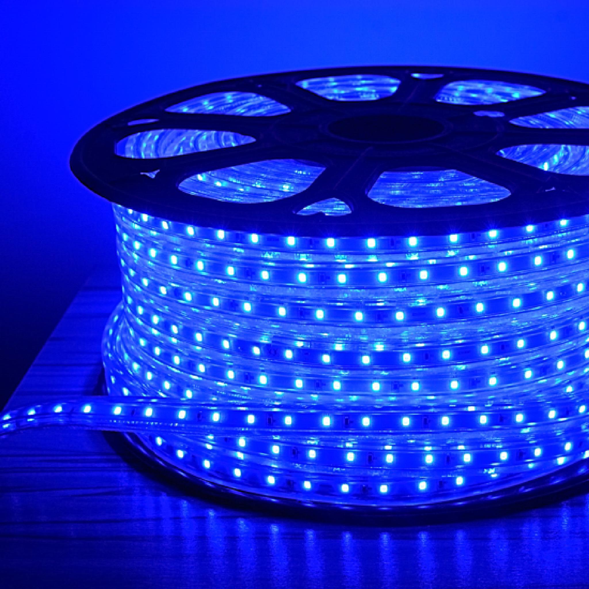 Blue LED Rope Light For Outdoor Decor by LEDBulbs123