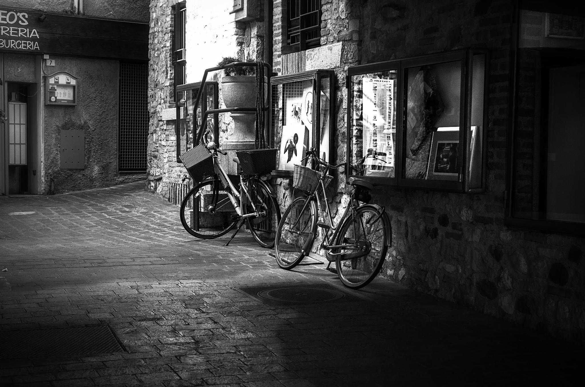 ..biciclette a riposo.. by enricosottocorna