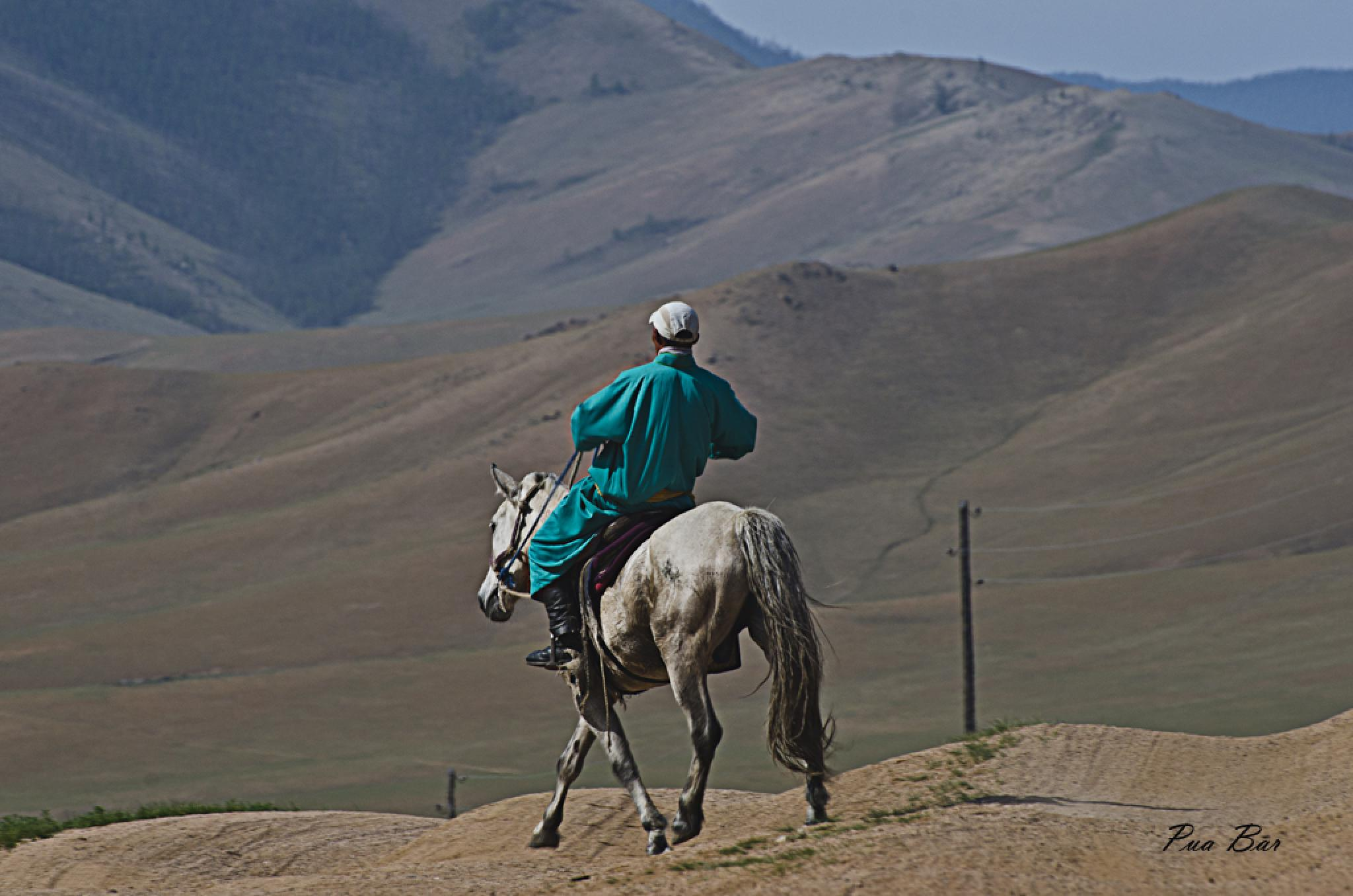 Riding at the Mongolyan stepps by puabar