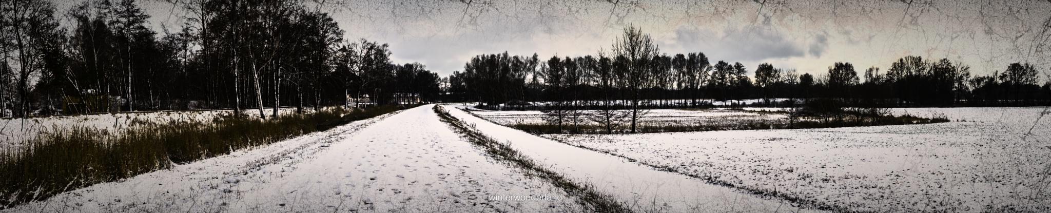 winterwonderland by JoshuaHolznagel
