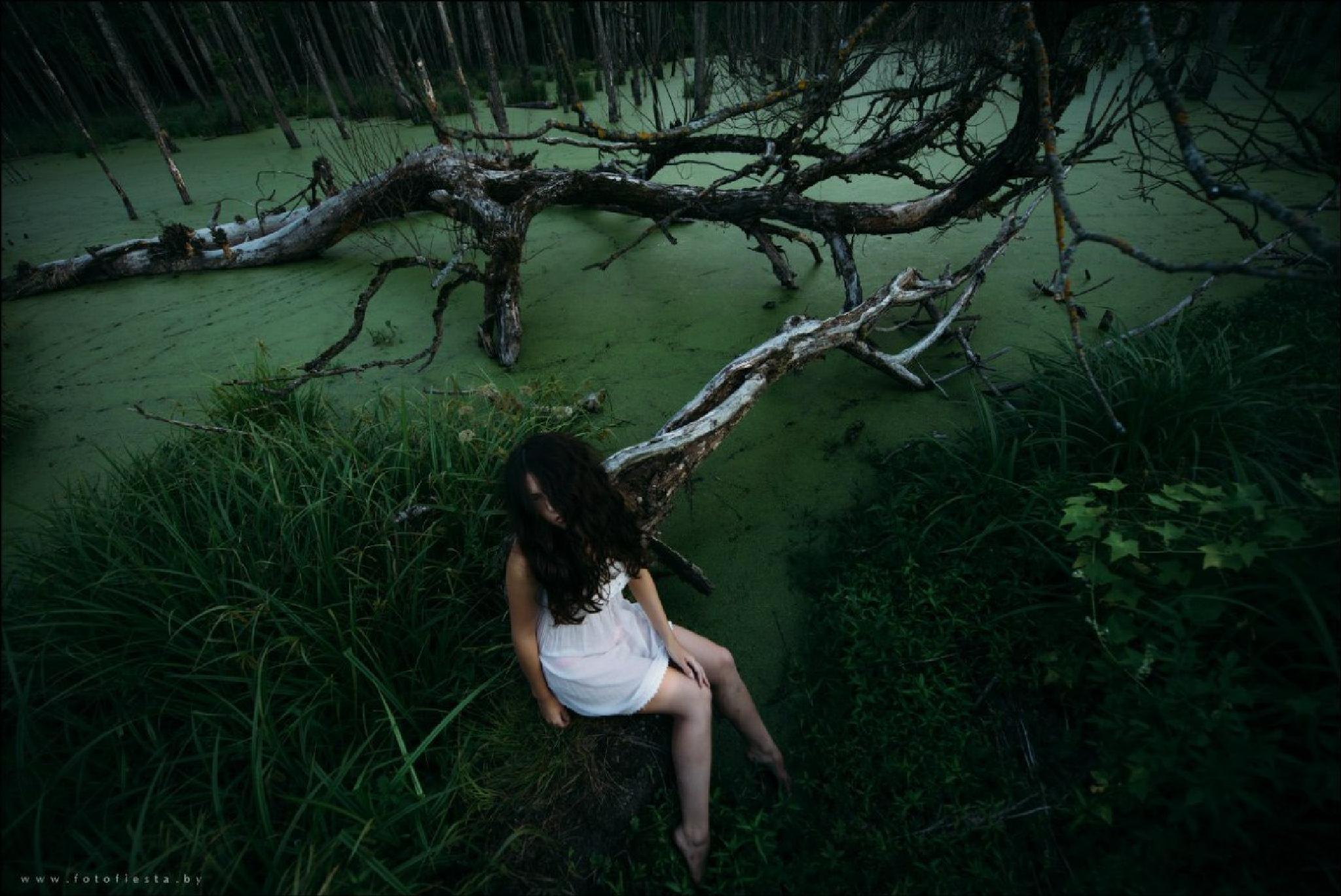 mystical swamp by Fotofiestastudio
