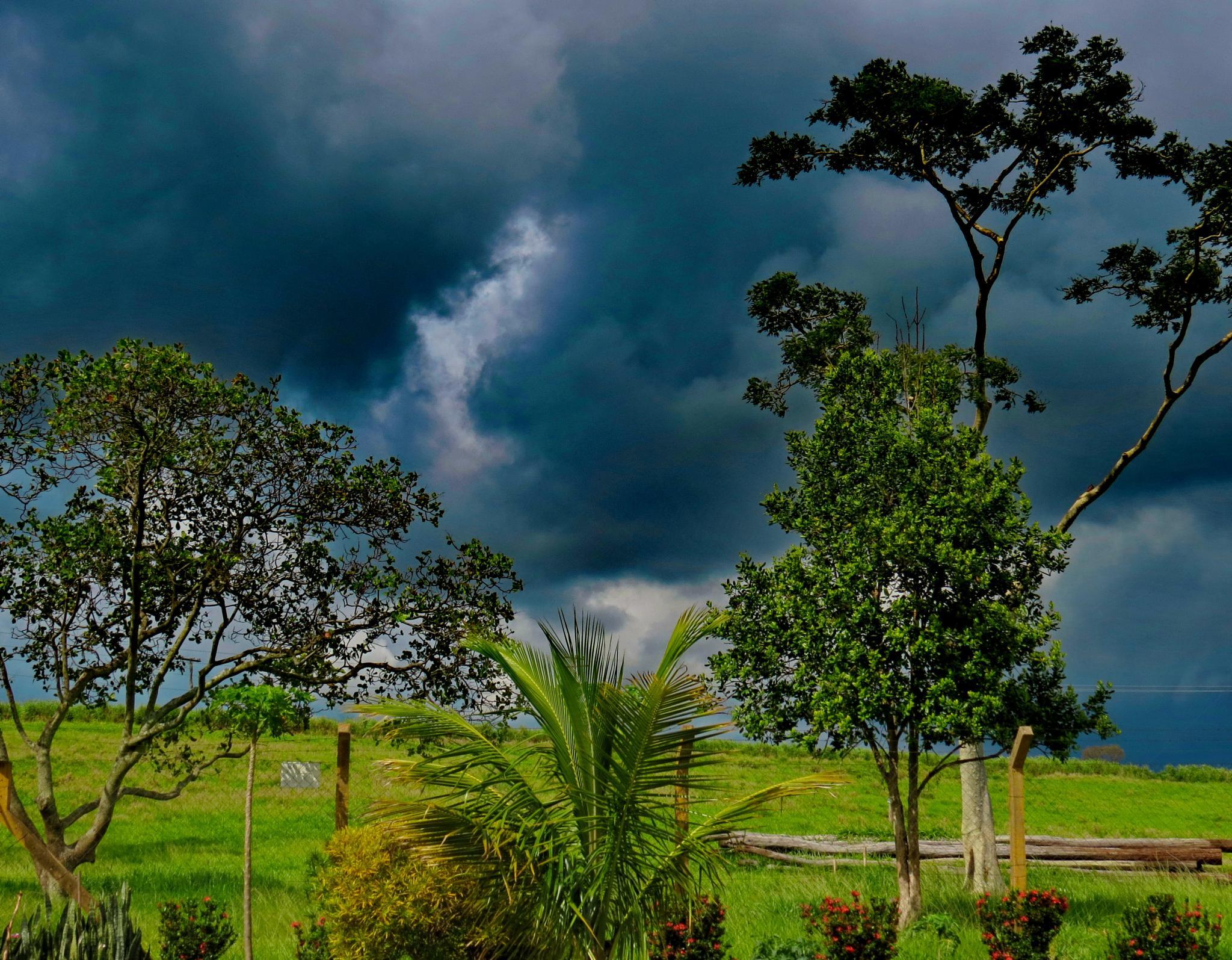 Sun & Rain by Nestor