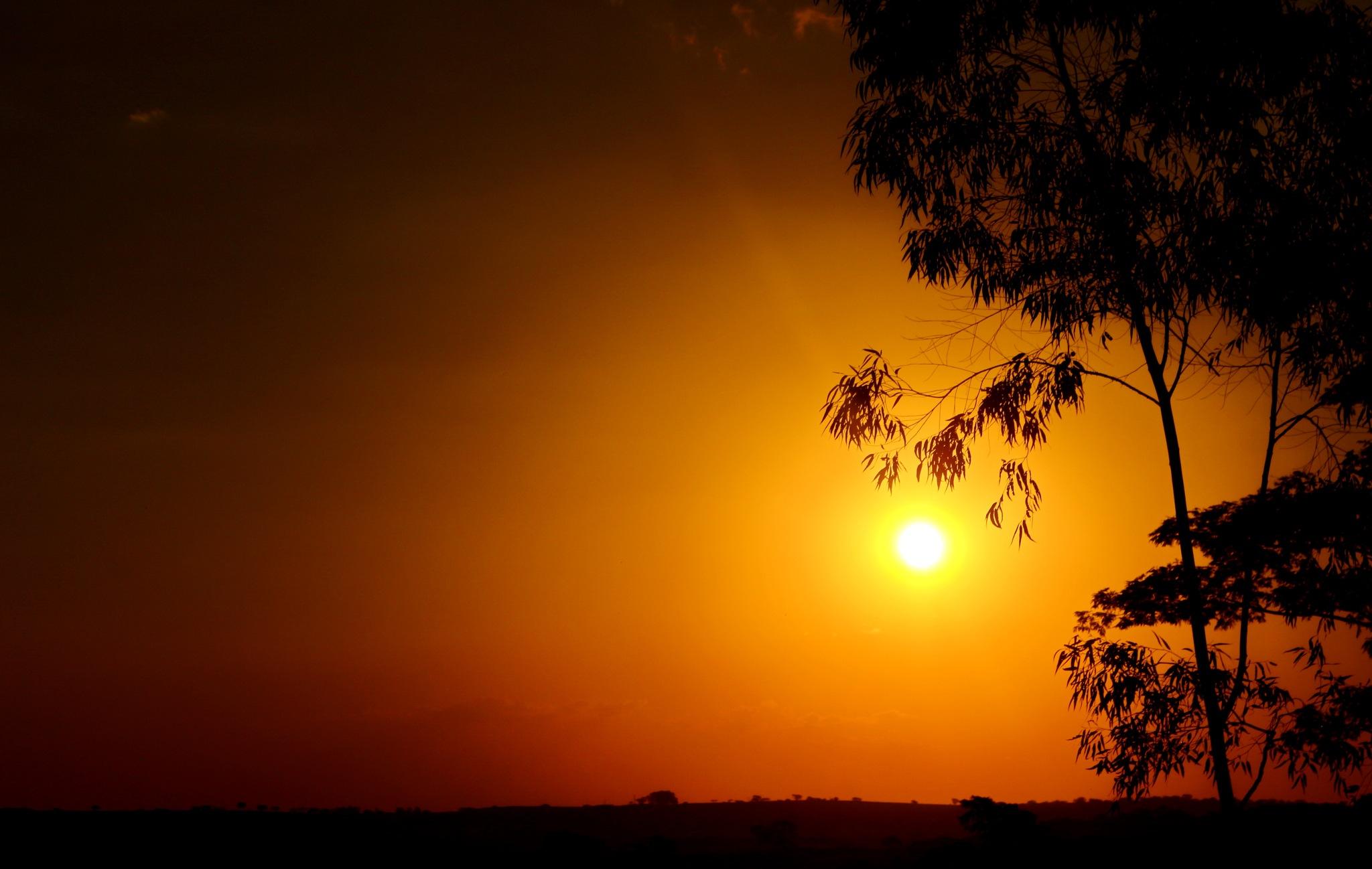 Sunset only... by Nestor