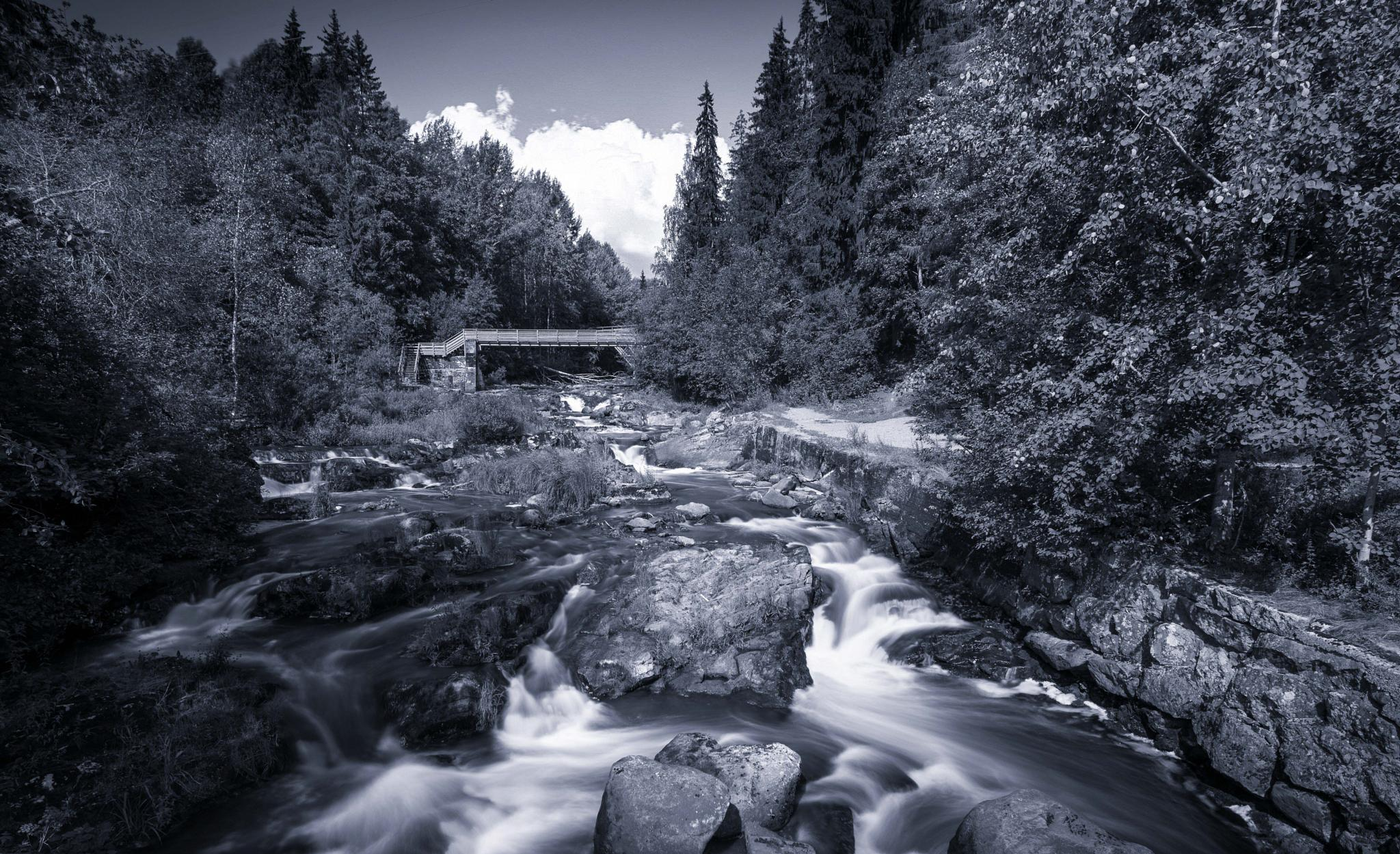 White River by Anssi