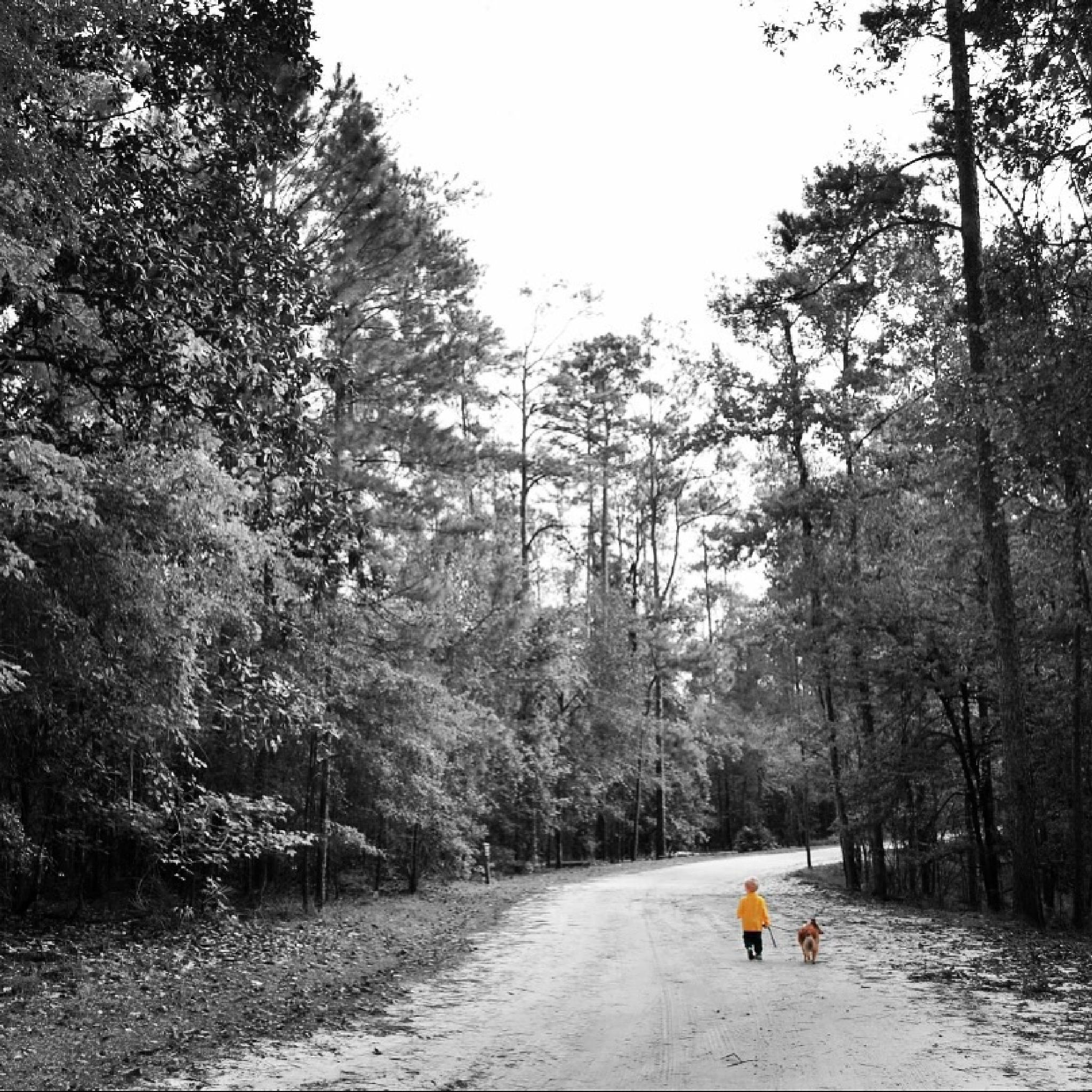 Walk with the family by Jennifer Hassinger