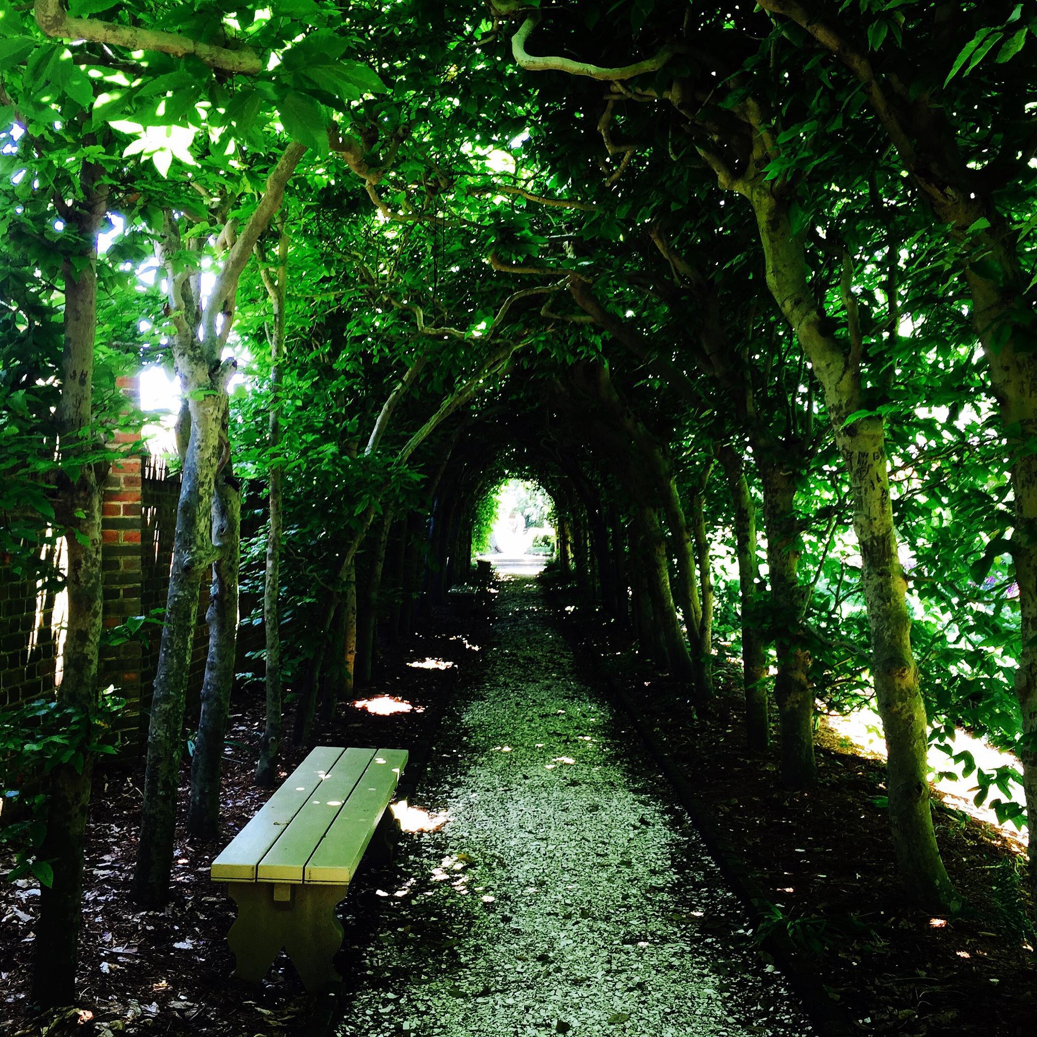 Walkway by Jennifer Hassinger