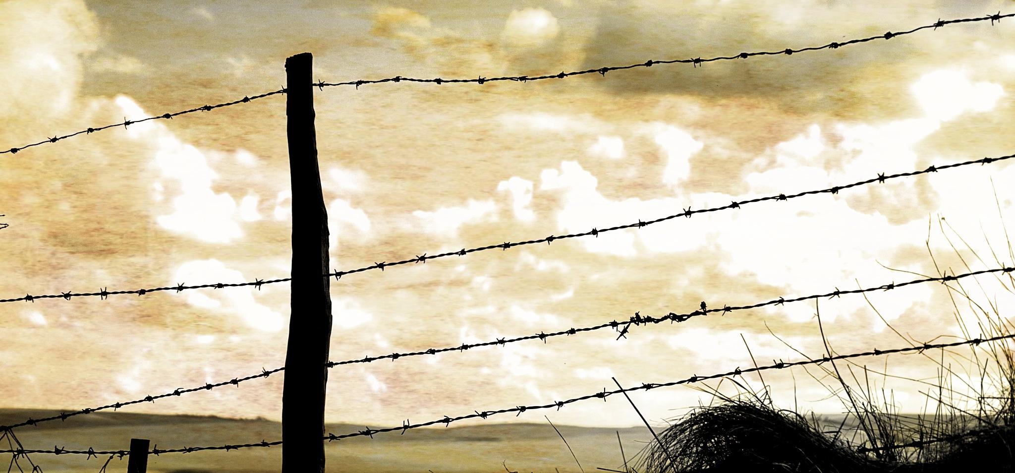 Wire Fence by Keith Patrak