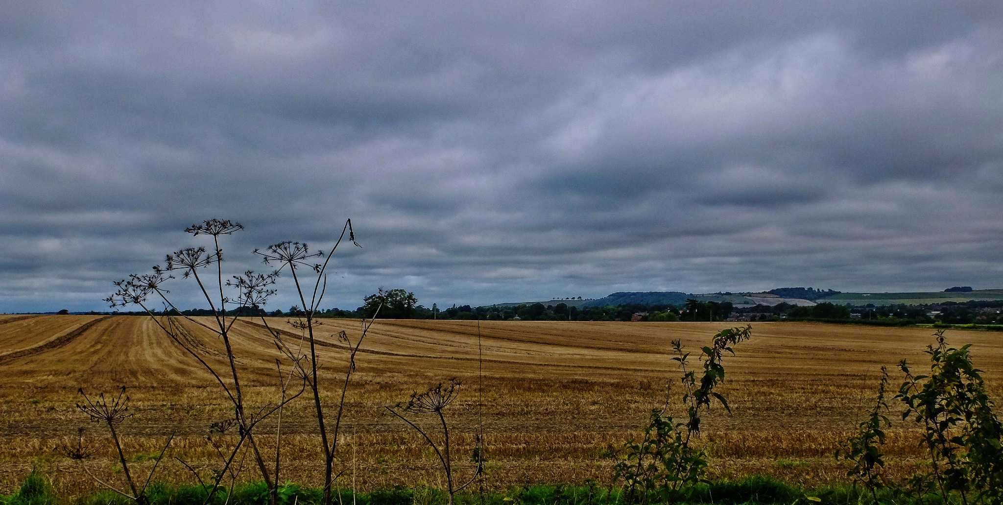 View Towards Roundway Hill - Devizes by Keith Patrak