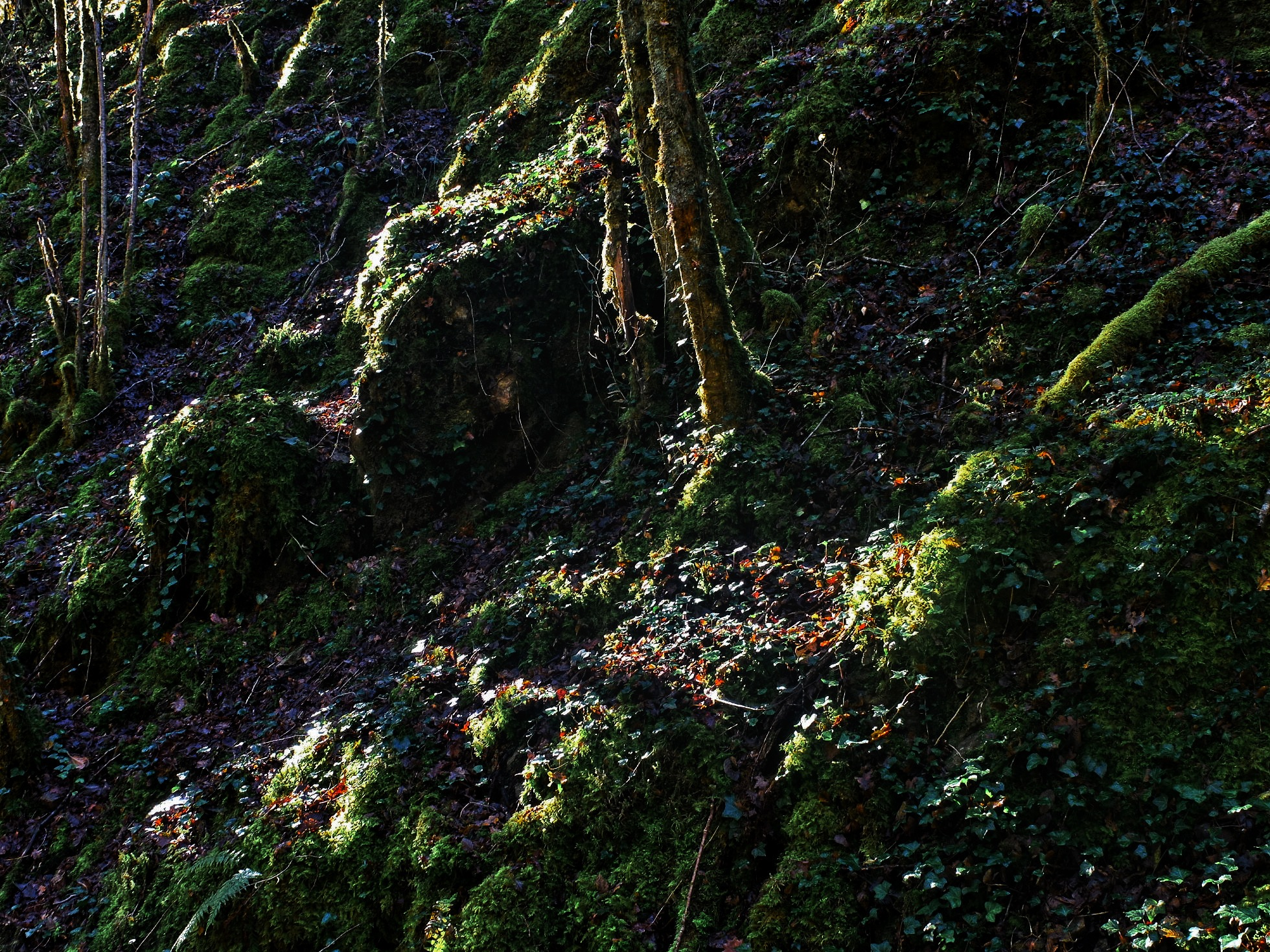 Sun Lit Boulders by Keith Patrak