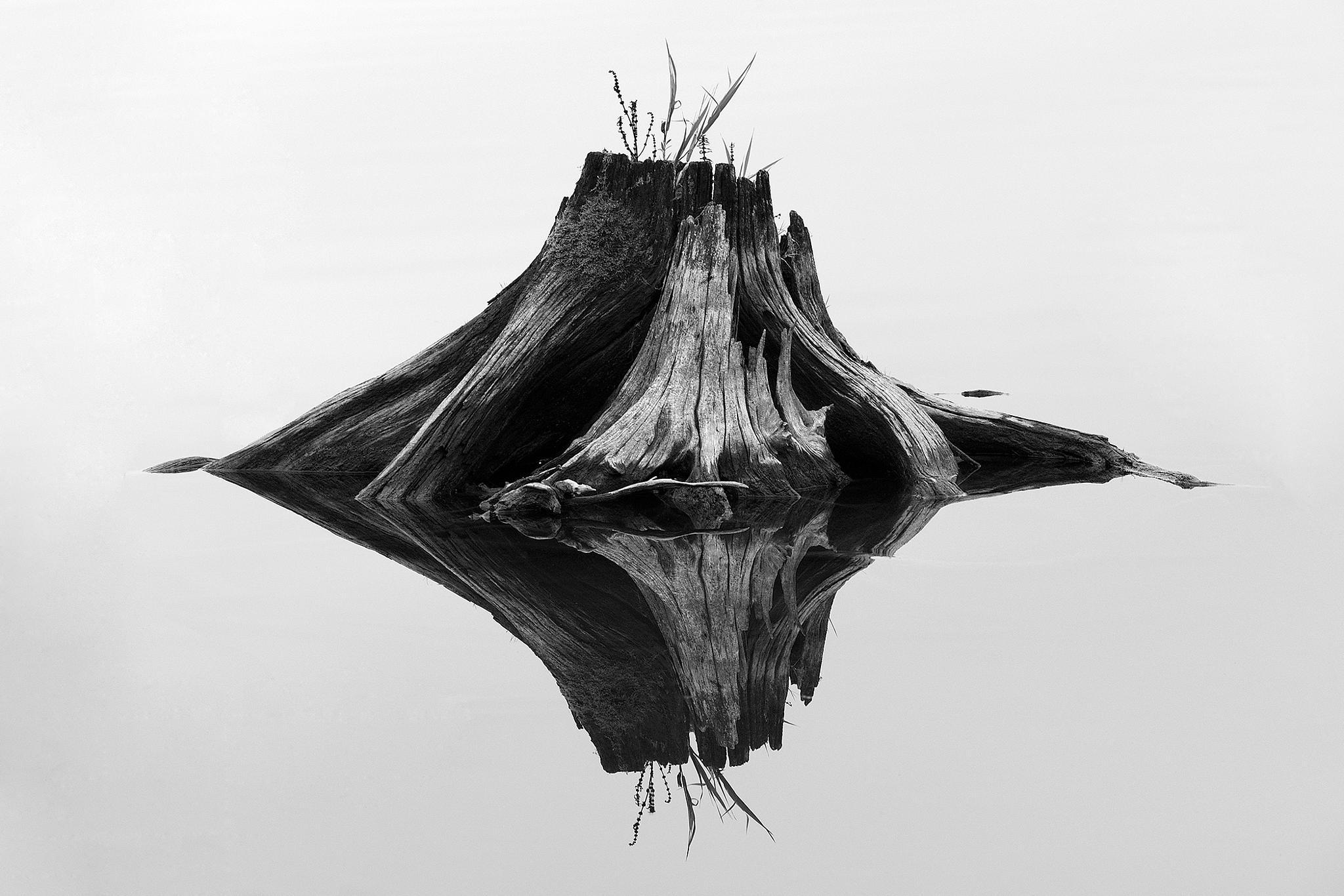 mirror by Jan Longr Knot