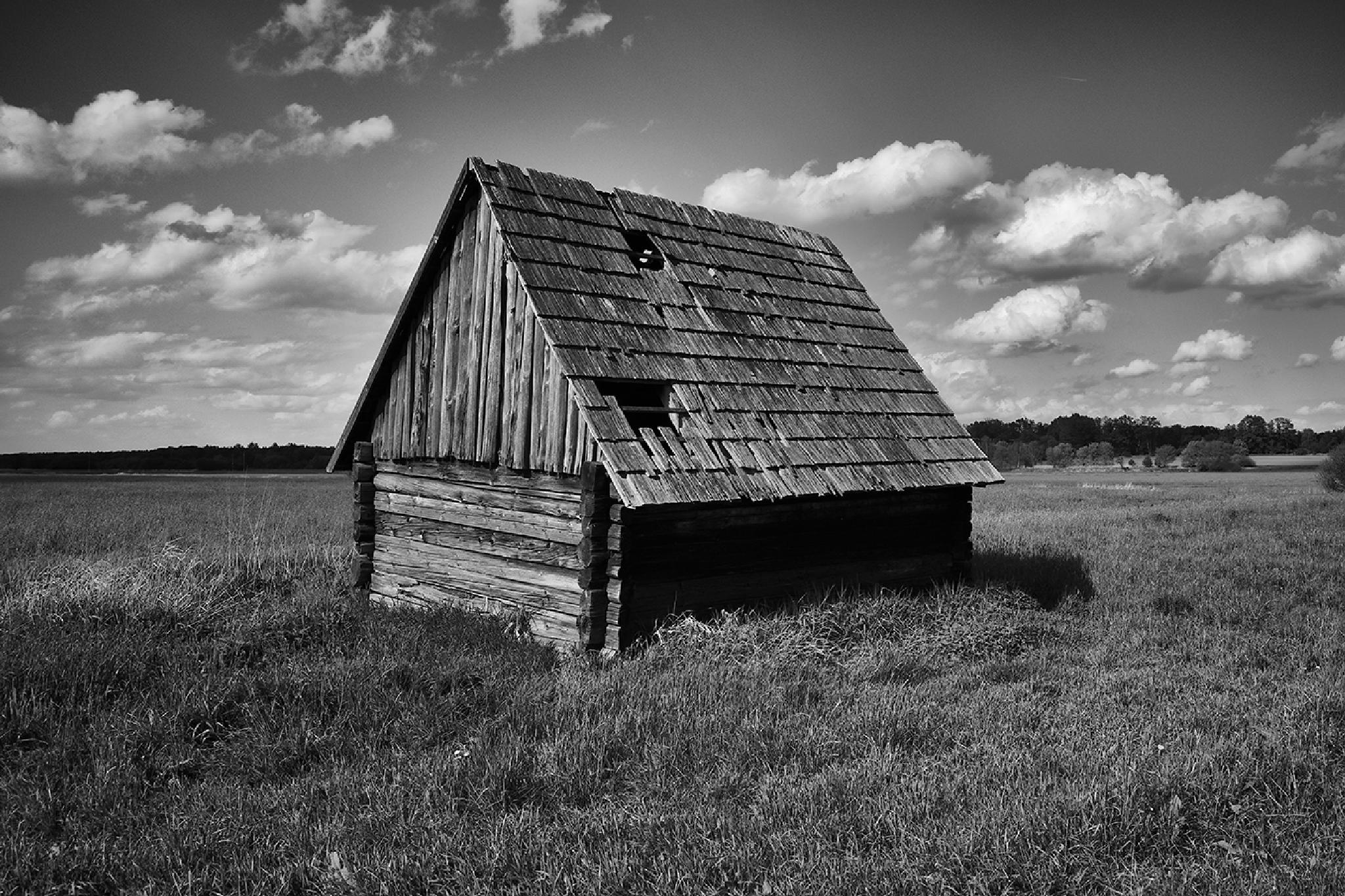 forgotten hayloft by Jan Longr Knot