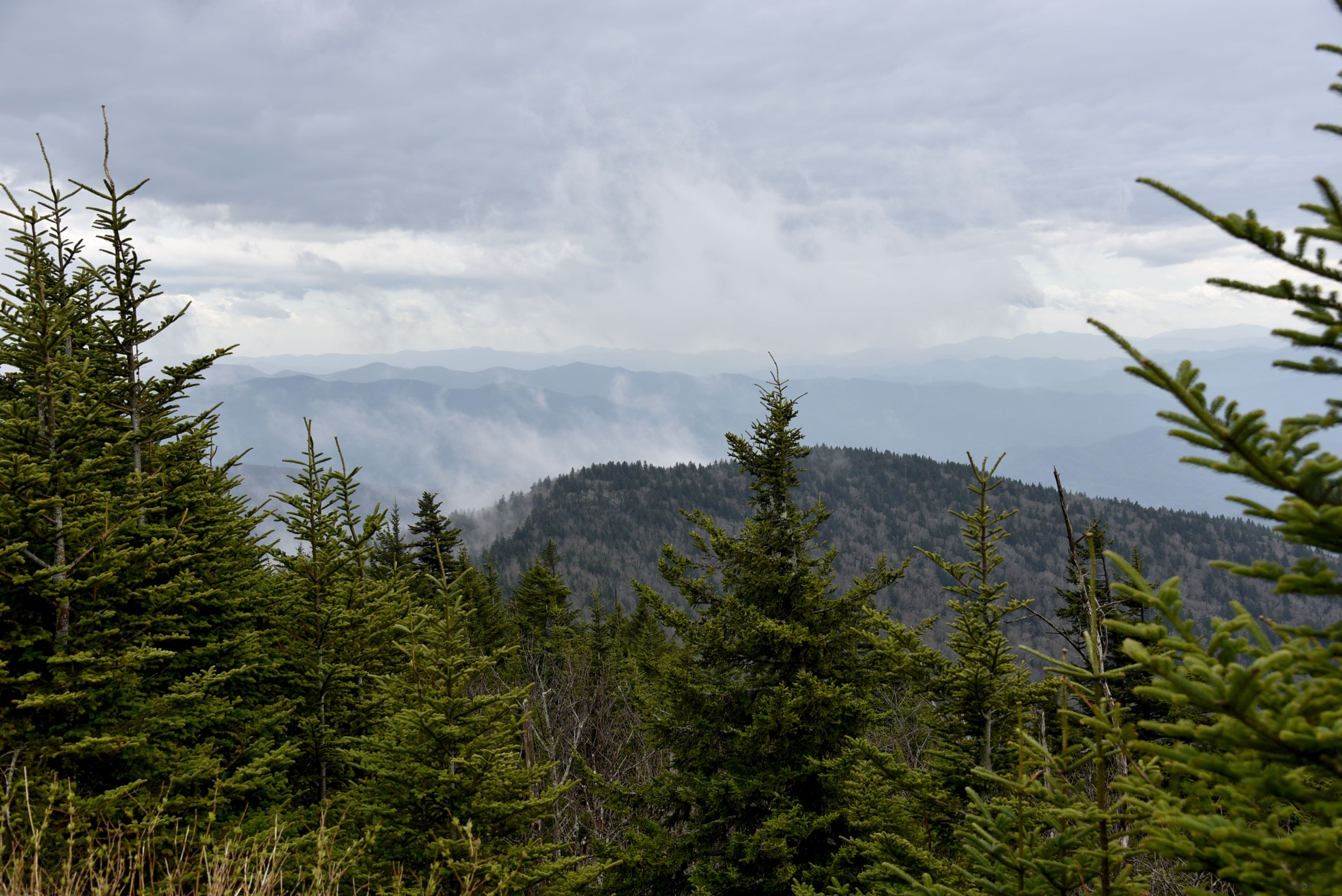 Great smoky mountains national park, Tennessee by vinnysphotos