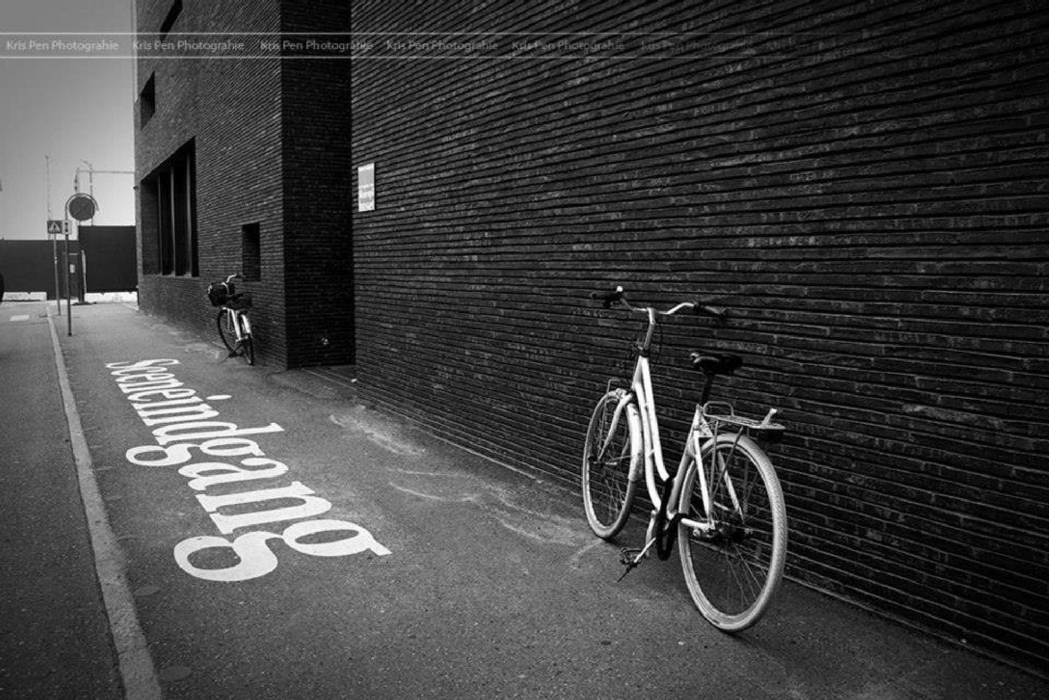 Bicycle in Copenhagen by Kris Pen