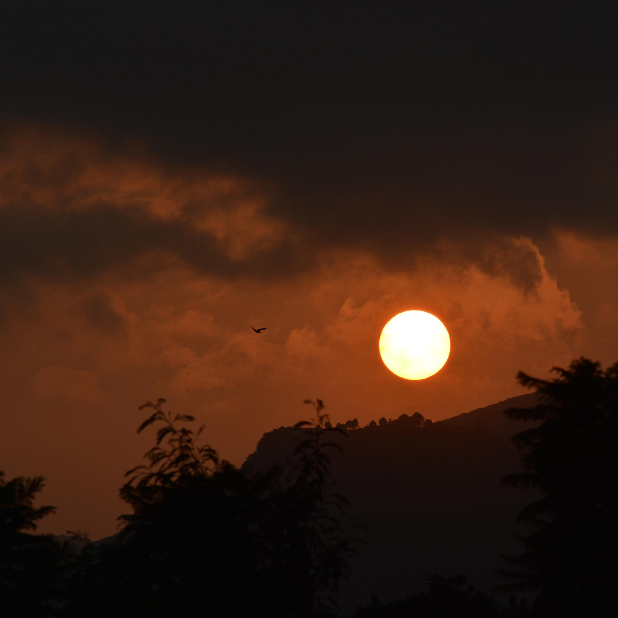 Sun Set by Mehtab Hussain