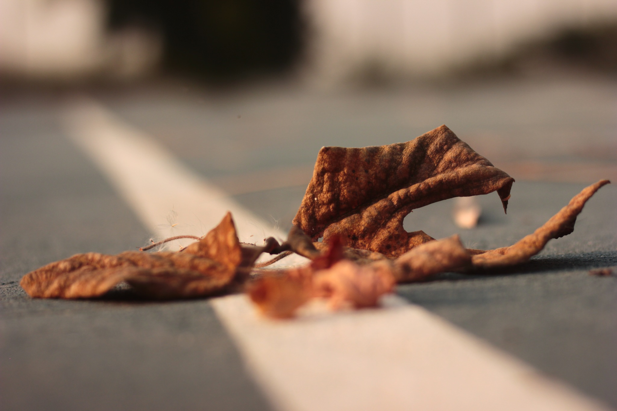Broken life by Mehtab Hussain