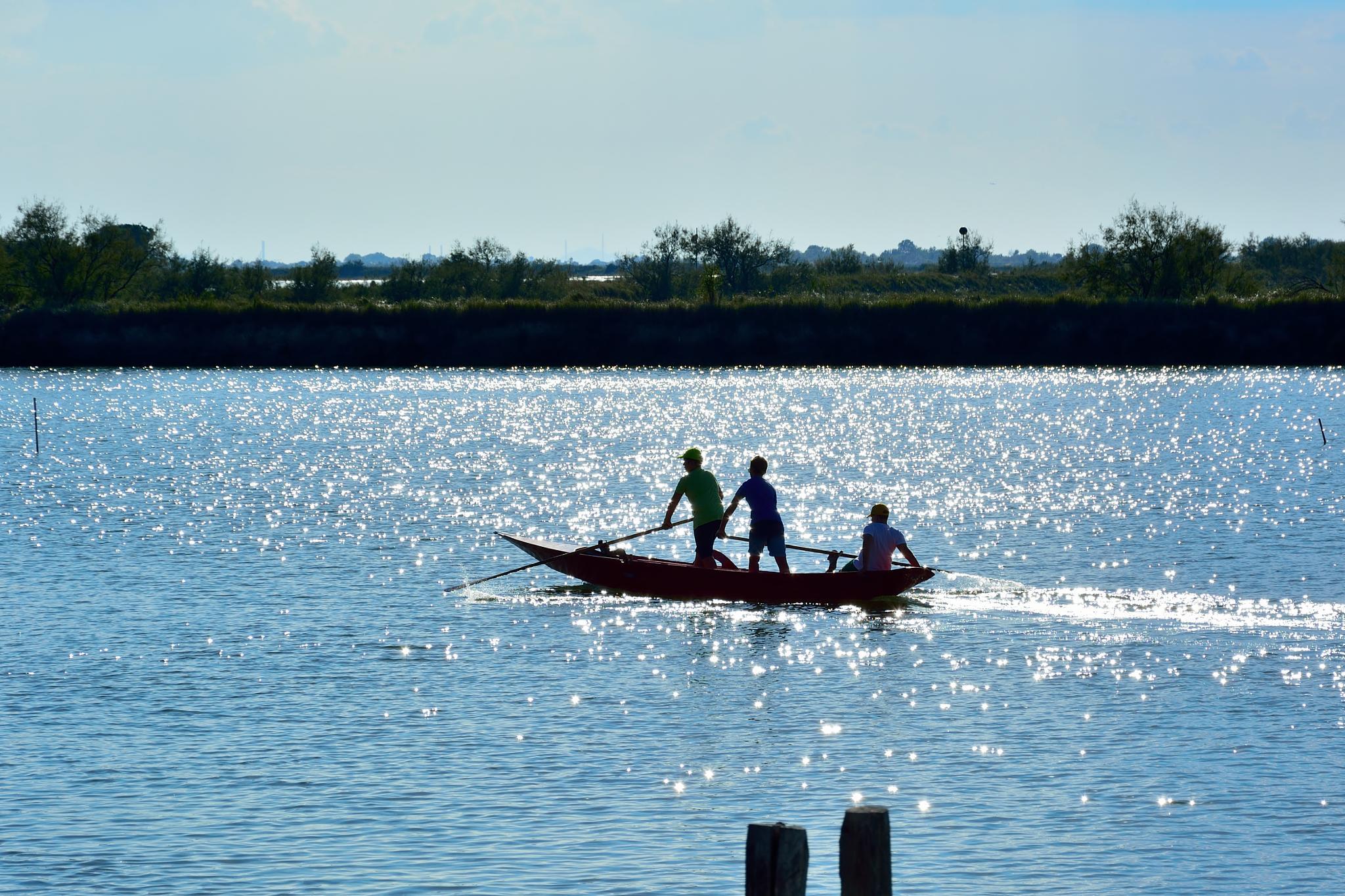 Rowing through the lagoon by barmuc73