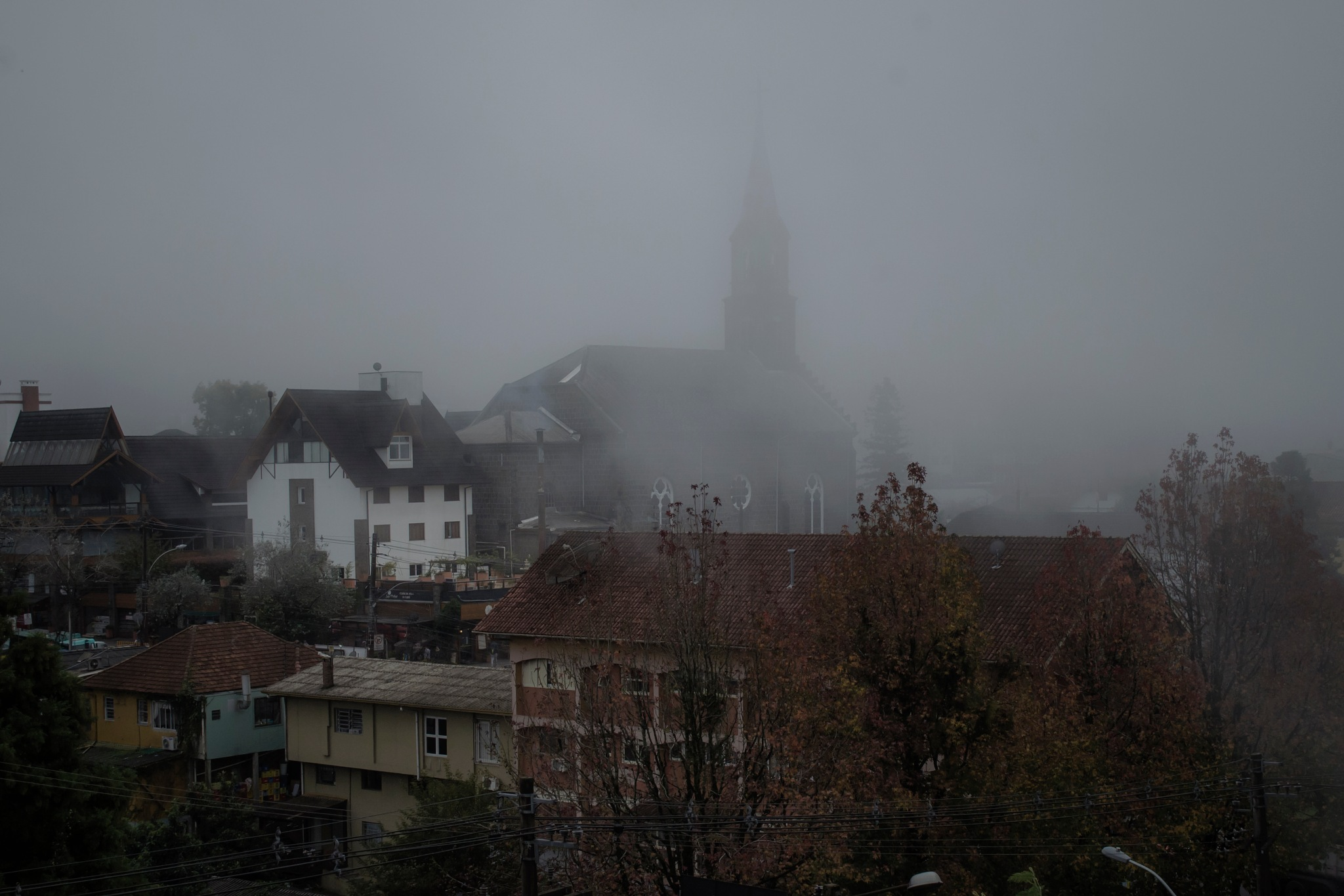 Fog by jcarloscmonteiro