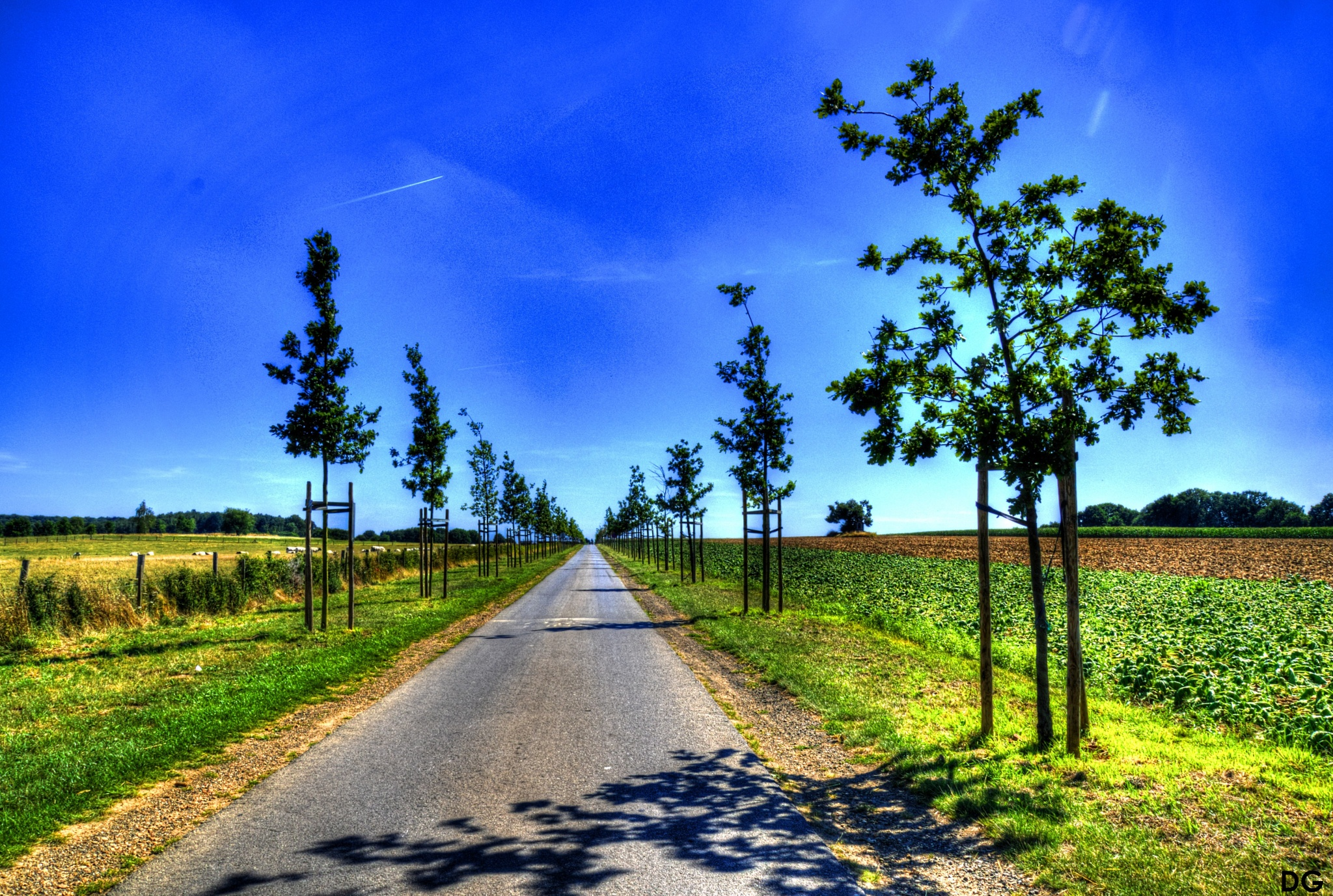 Road IV. by Dirk Gonthier