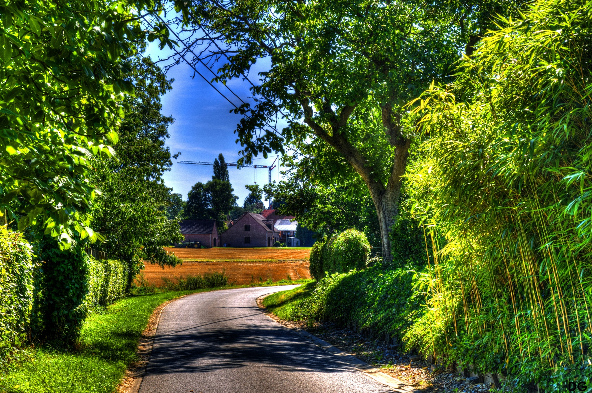 Road VI. by Dirk Gonthier