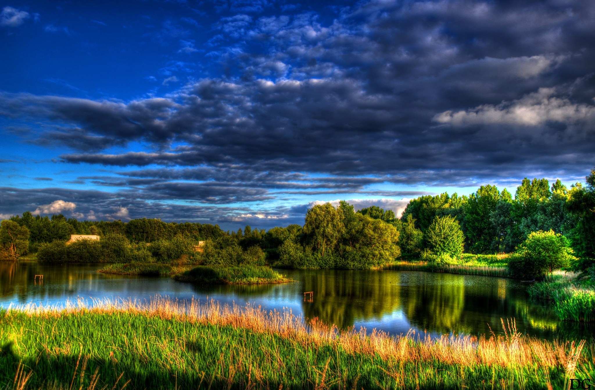 Pond. by Dirk Gonthier