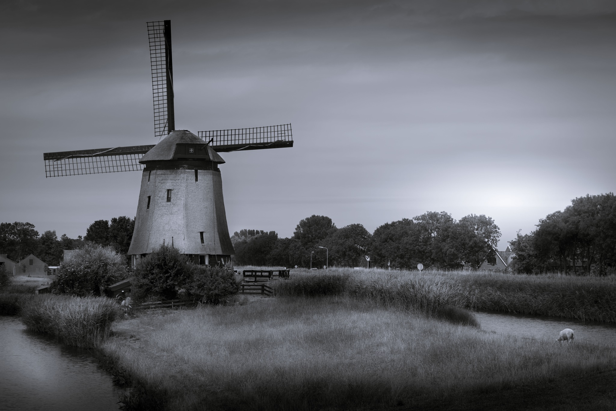 Windmill Schermerhorn by Mario