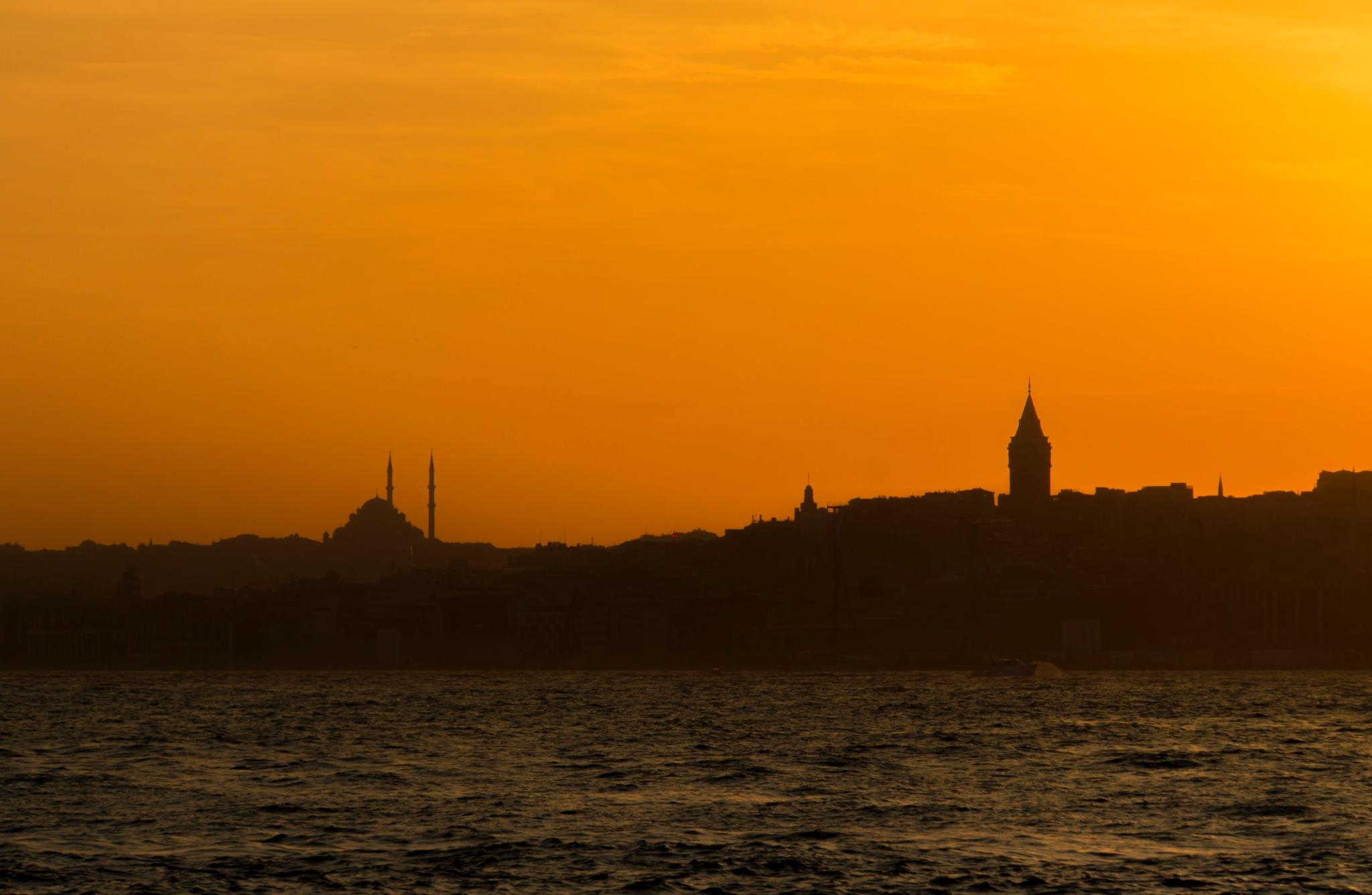 istanbul-II by lizardofthewisard