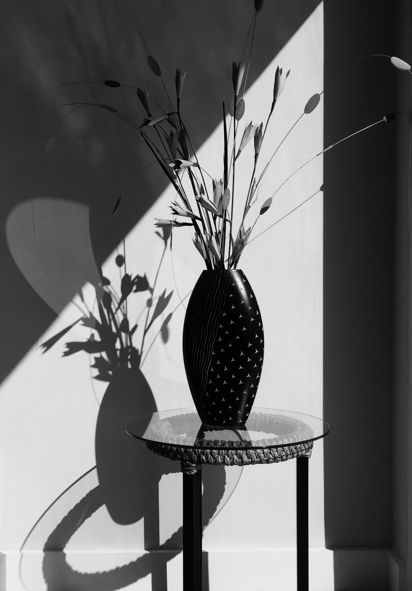 The vase & the shadows by DanyParodi