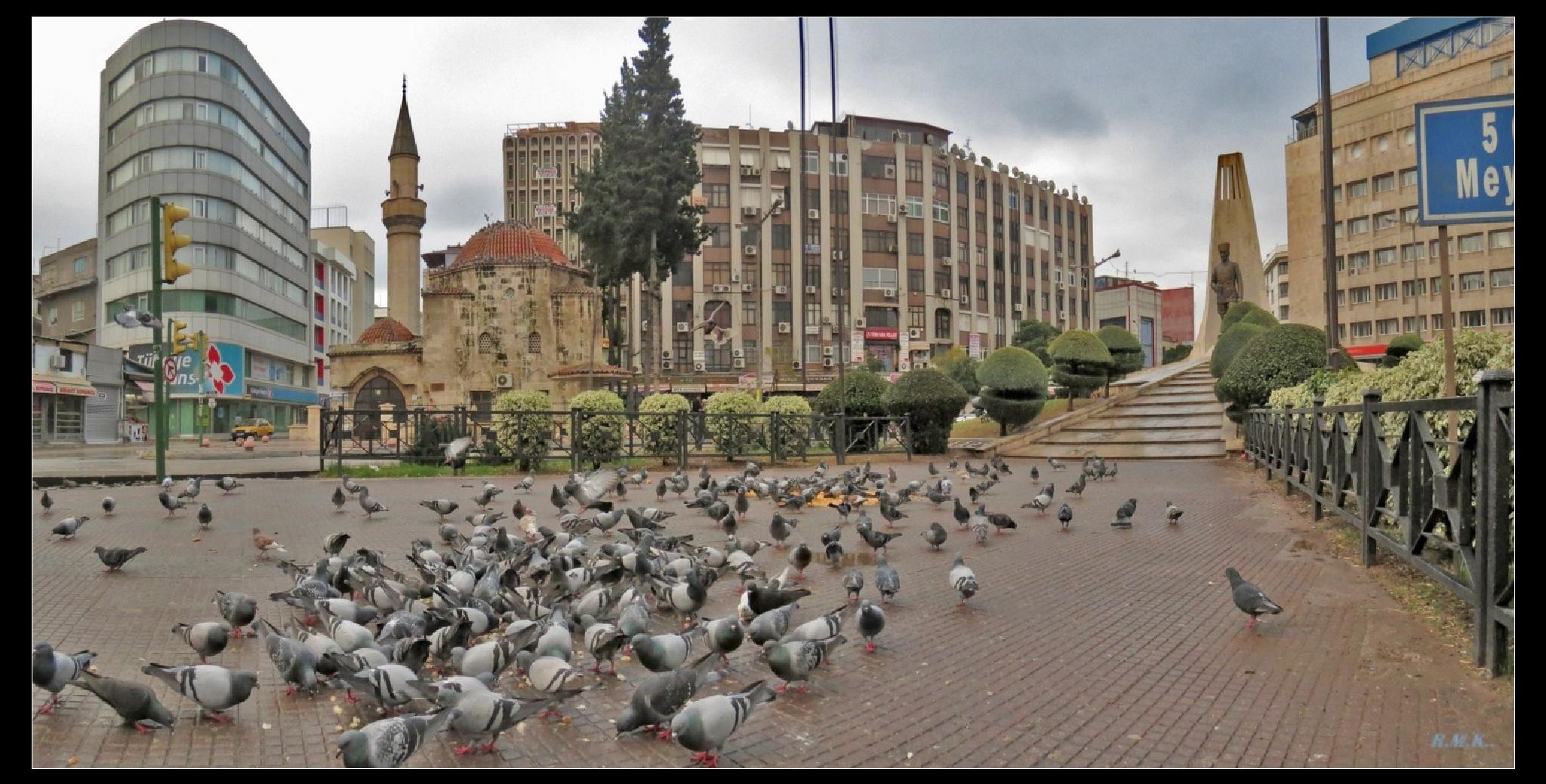 ADANADAN  GÜZELLİKLER by gezgin1