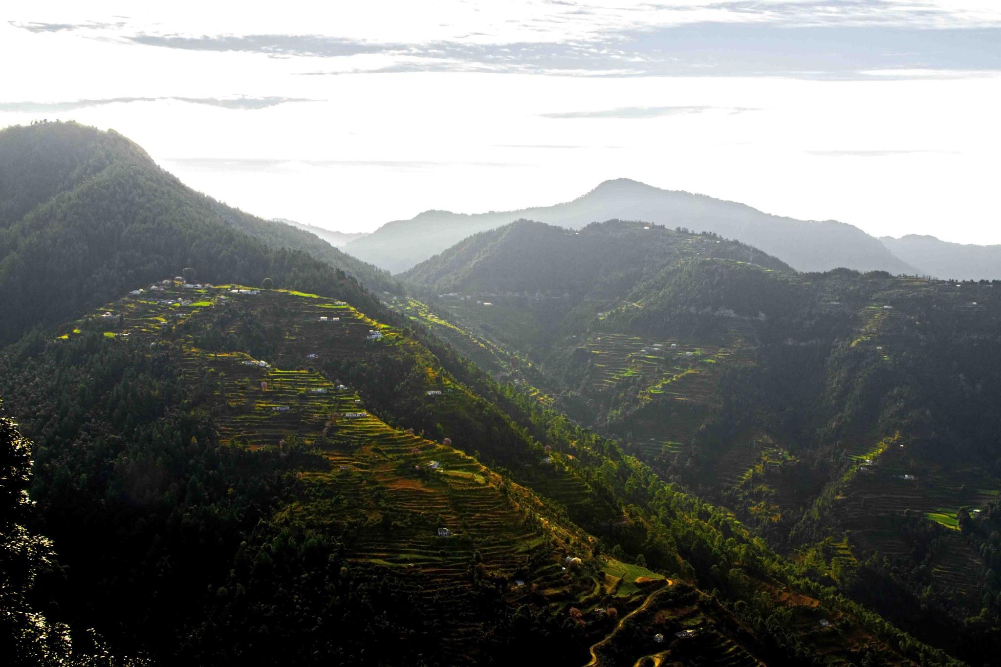 KUMAON!! Rolling Hills.. by guran60