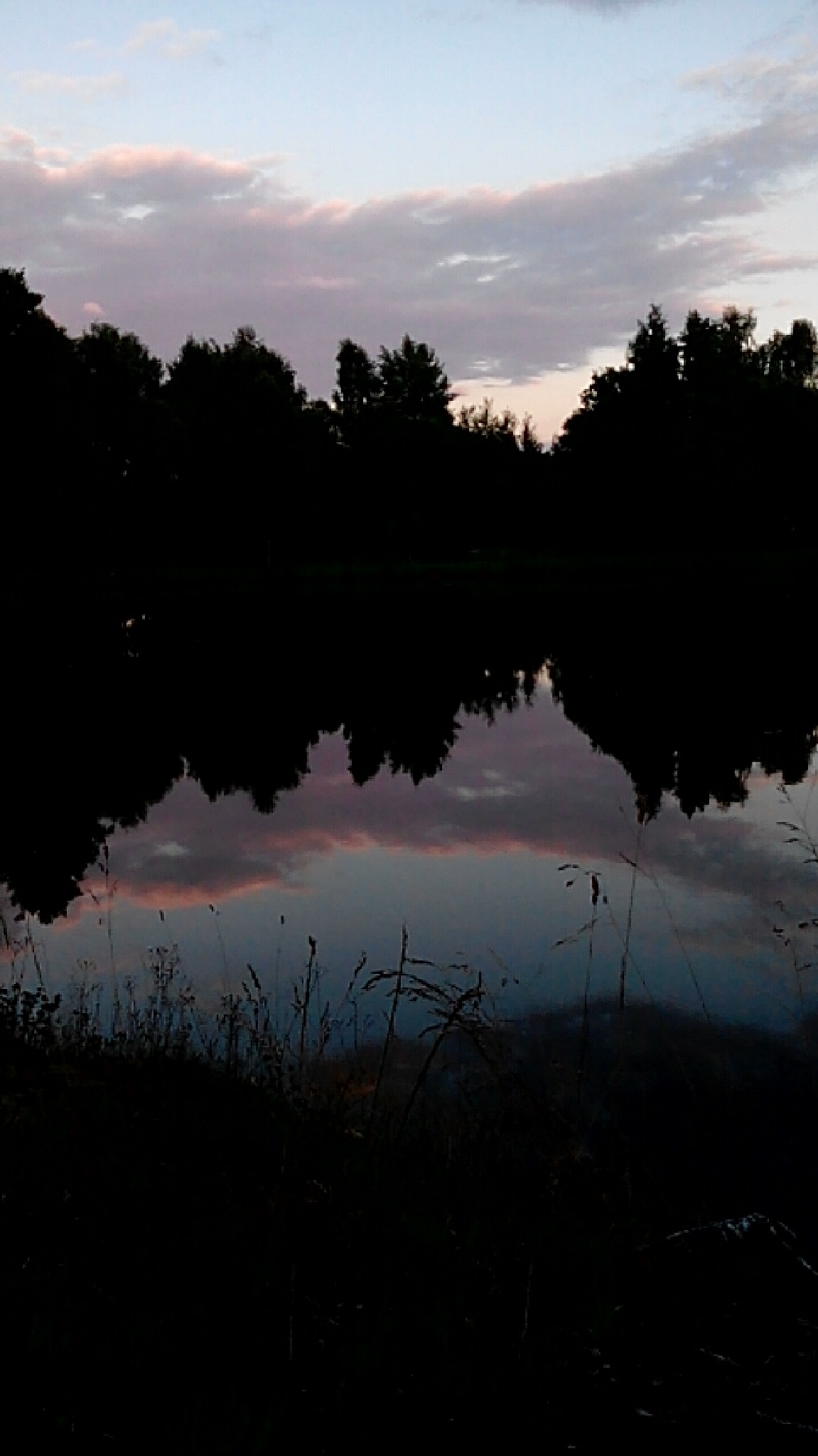 evening at the pond by Marie Mada Novotna