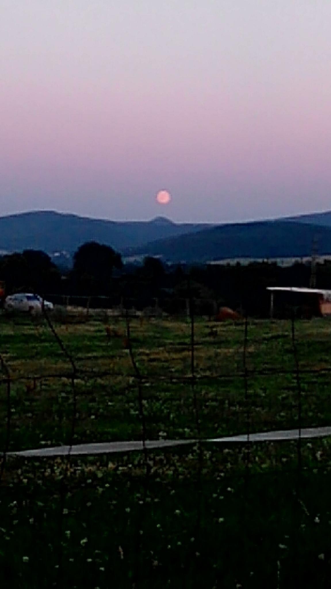 Photo in Random #úplněk #lužické hory #mada