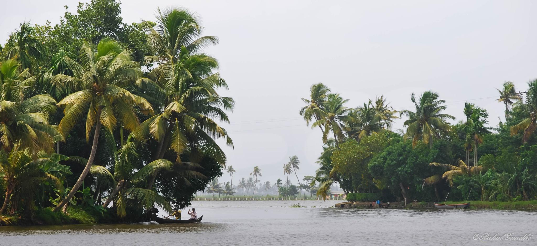 Backwaters by Rahul Gandhi