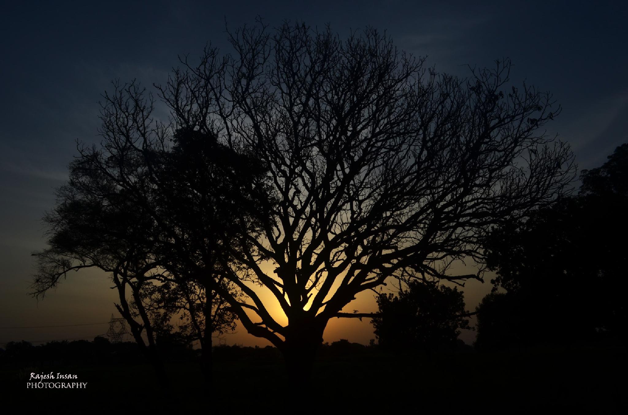 """beyond the light"" by RajeshInsan"