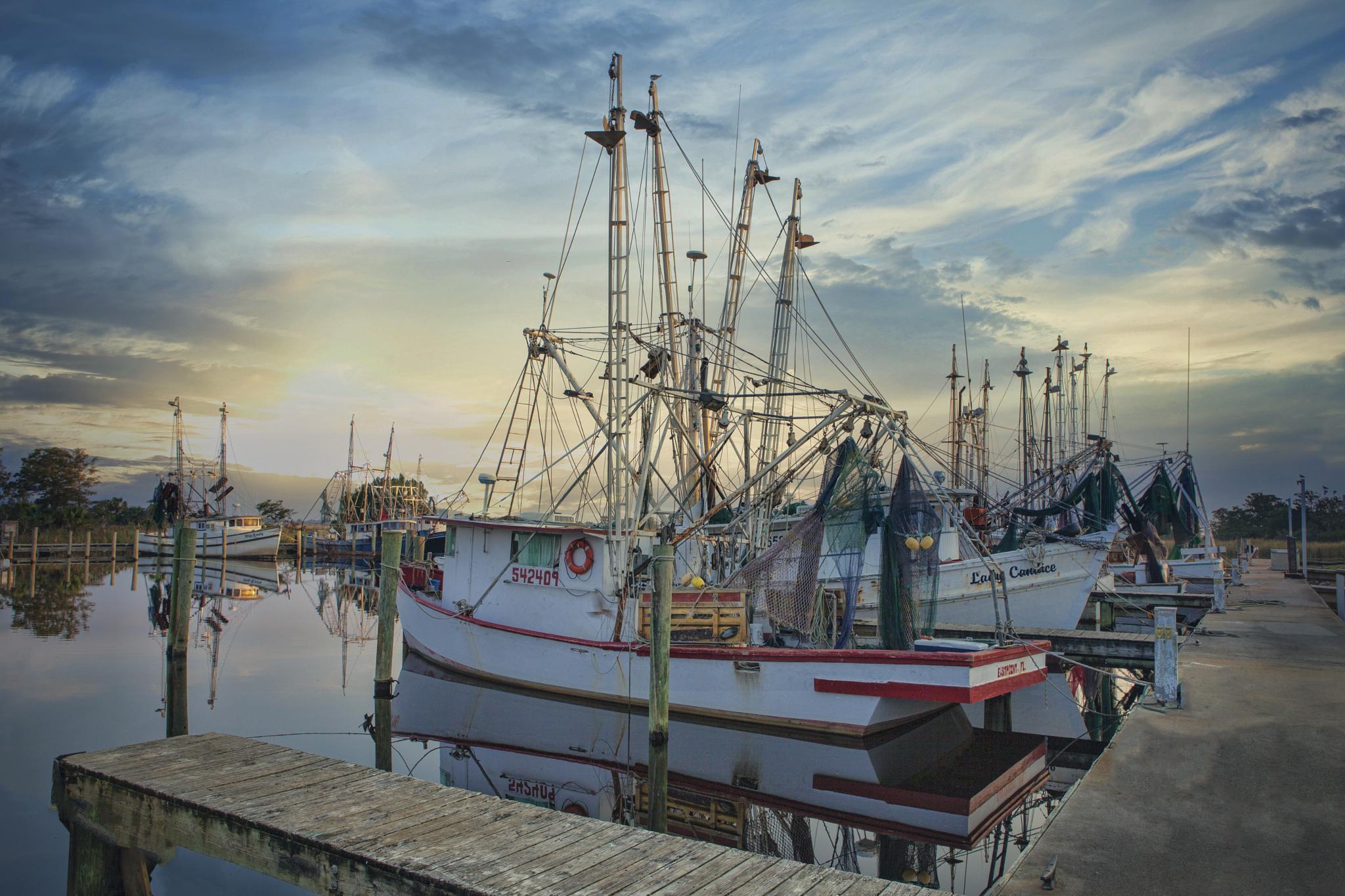 Shrimp Boats by Photos By Urban Rump