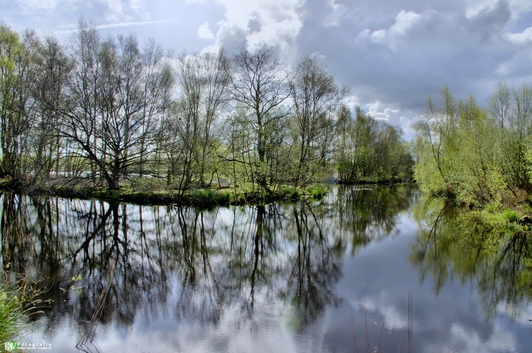 Reflection by Kees van de  Vooren