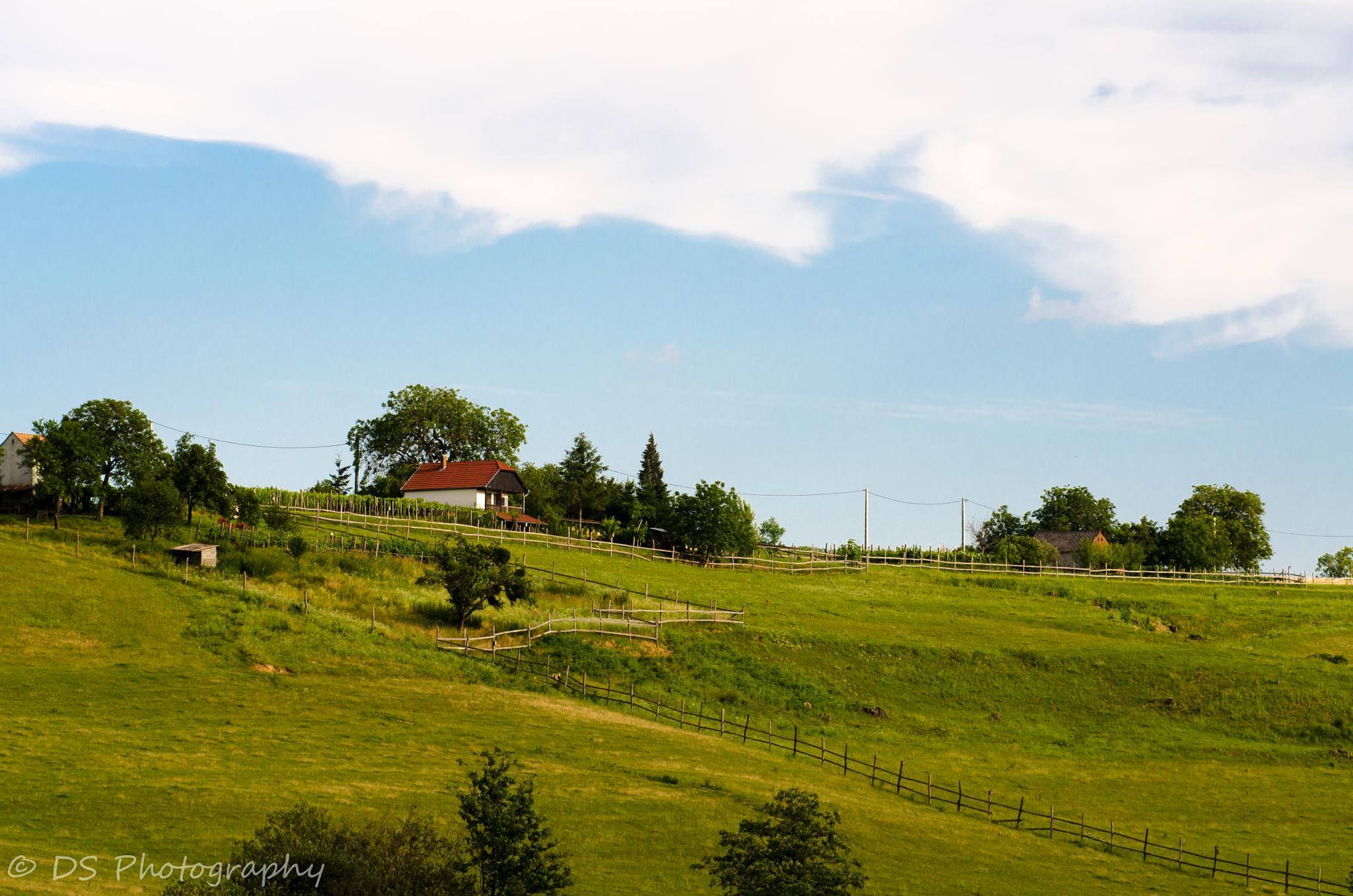 house on the hill by Dombora Sándor