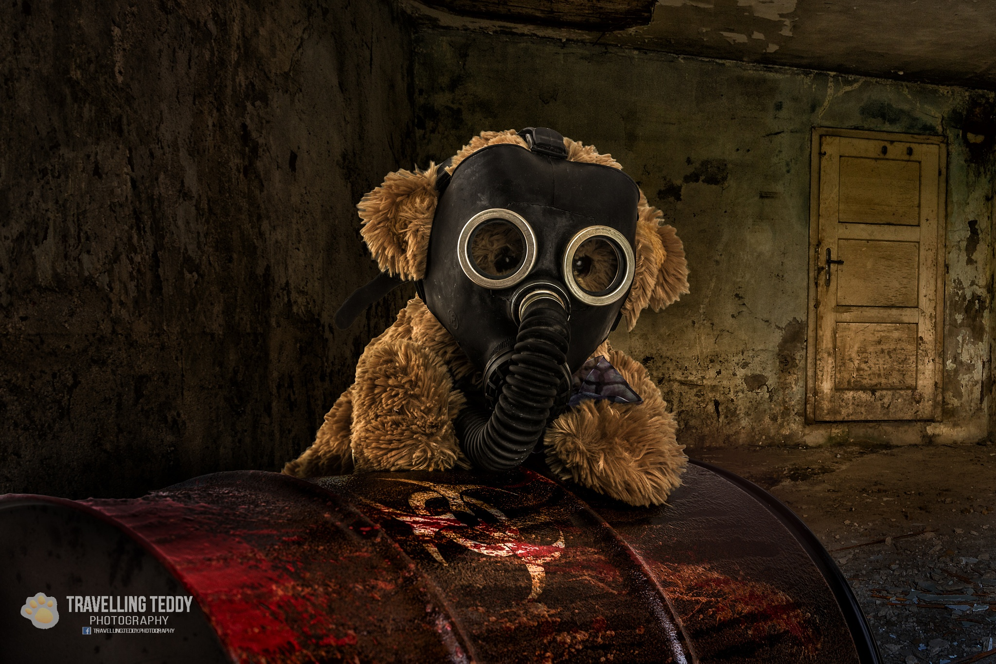 Teddy in troubles by Christian Kneidinger