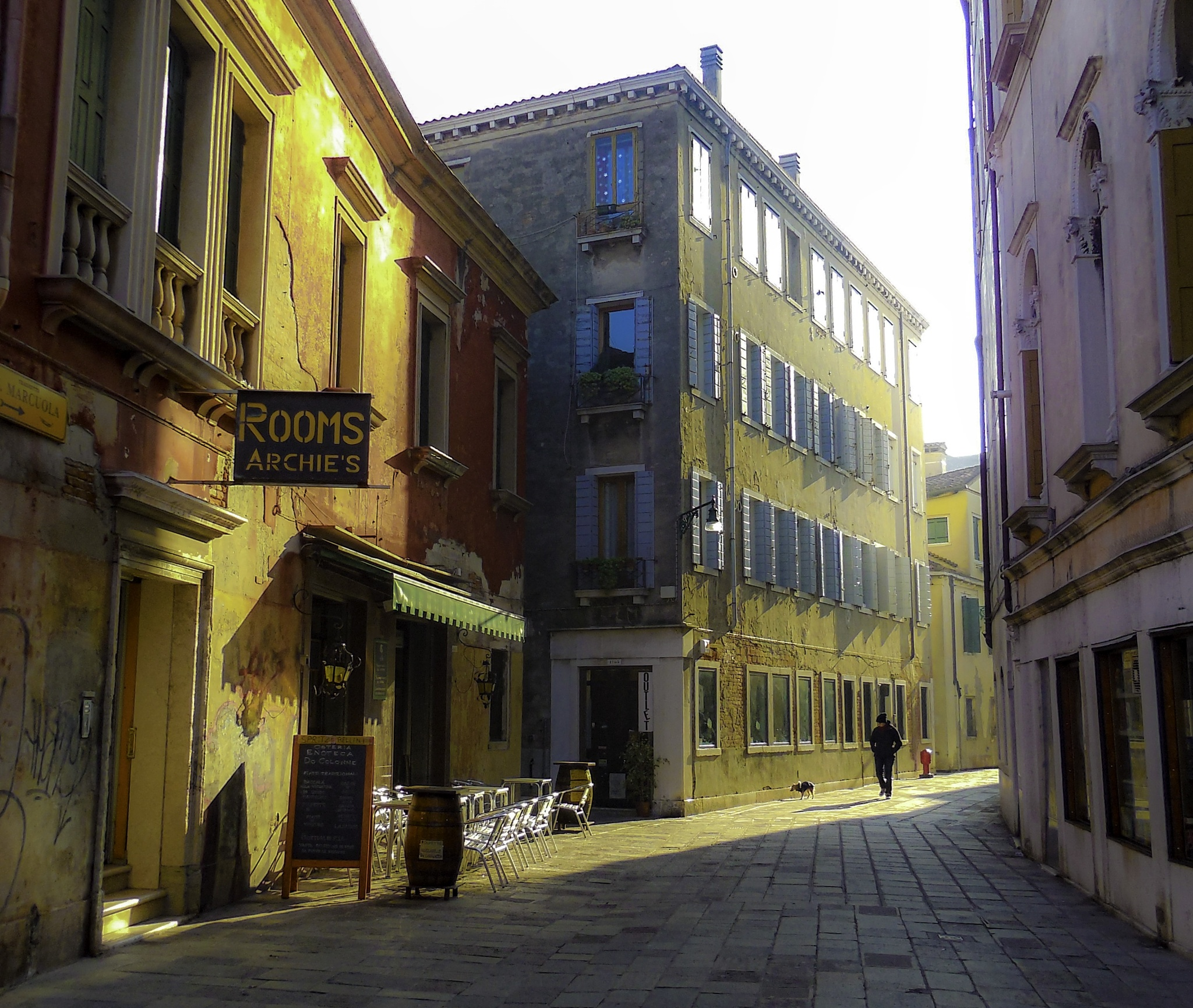 Strolling Venice - Man & His Dog by Lisa Iovino Nevolo Lewis