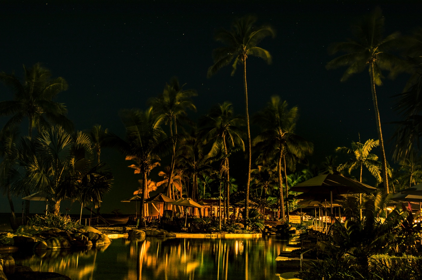 Midnight at the Oasis by Trevor McKinnon