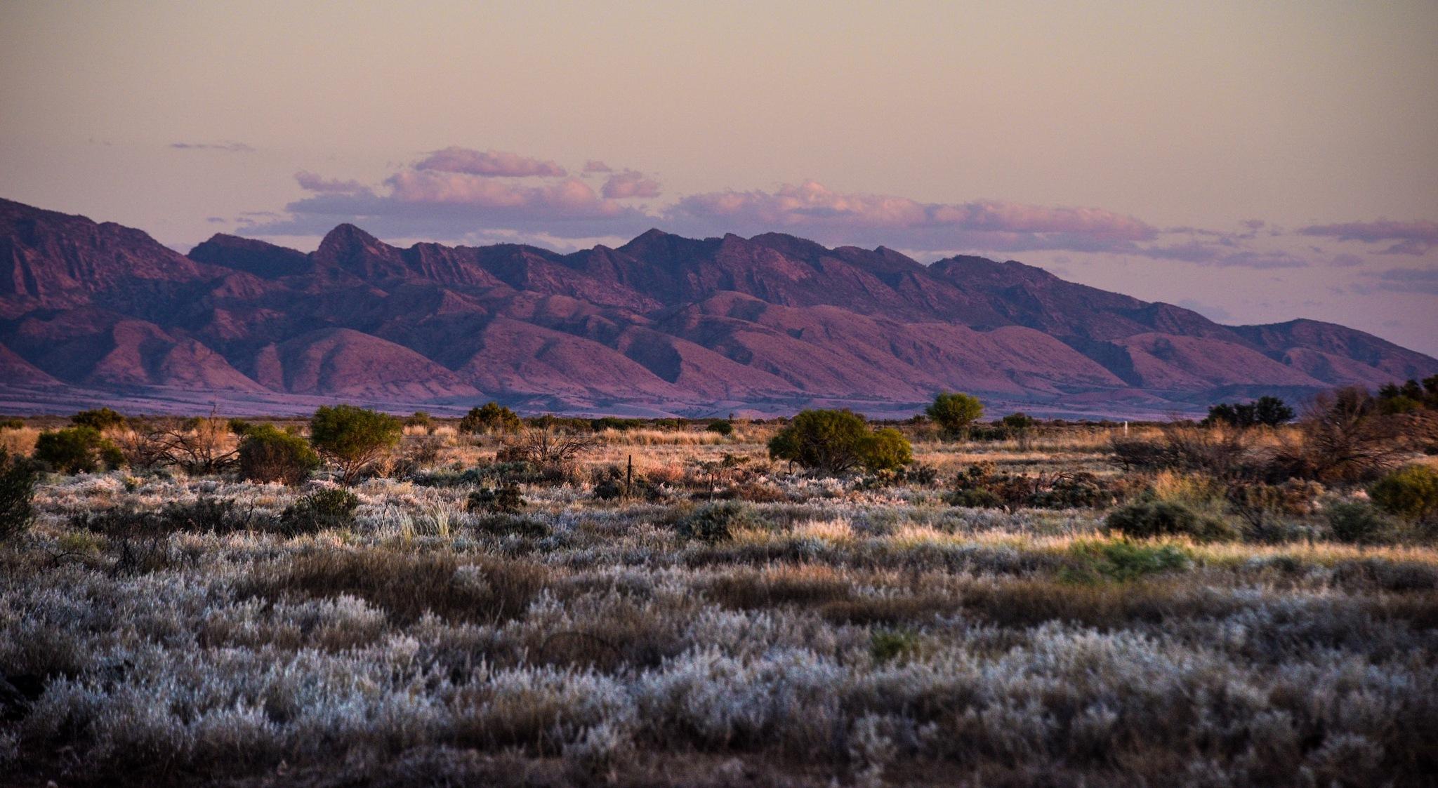 Flinders Ranges  by Trevor McKinnon