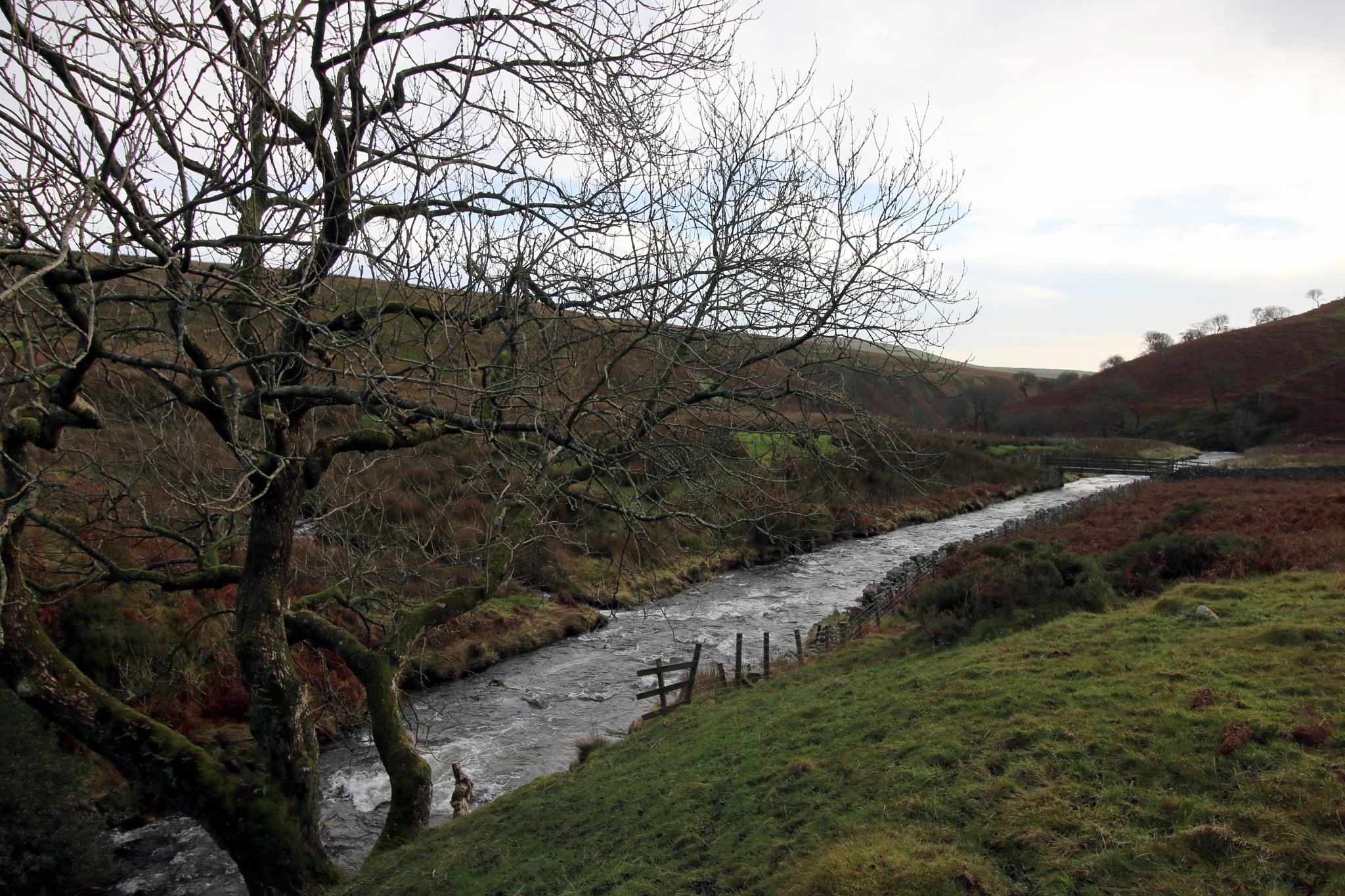 River Calder by Mark Egdell
